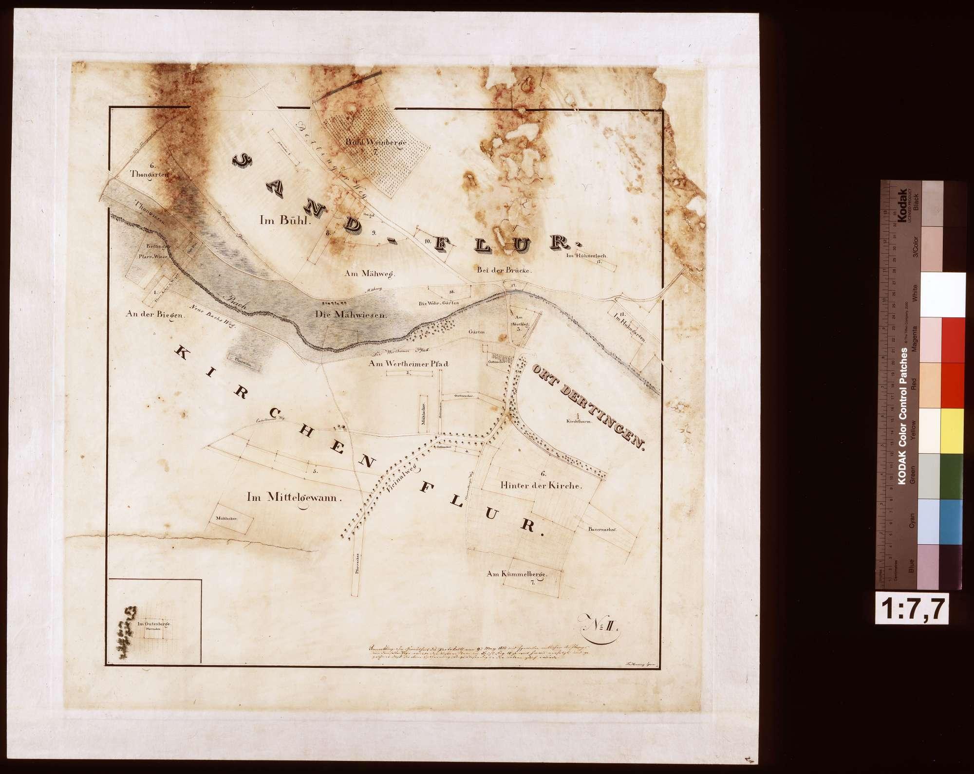 [Fluratlas gemeinherrschaftlicher Grundstücke auf Gemarkung Dertingen] Blatt No. II (Hauptkarte mit 1 Nebenkarte), Bild 1