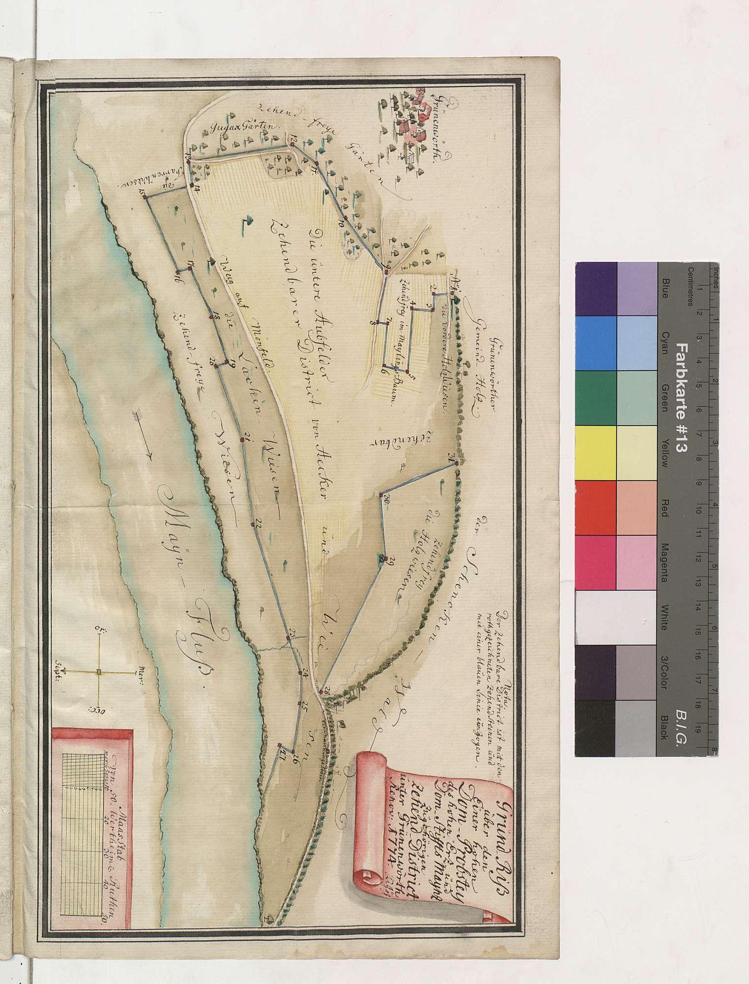 Grundriss über den einer hohen Dom-Probstei des hohen Erz- und Domstifts Mainz zugehörigen Zehend-Distrikt unter Grünenwört, Bild 1