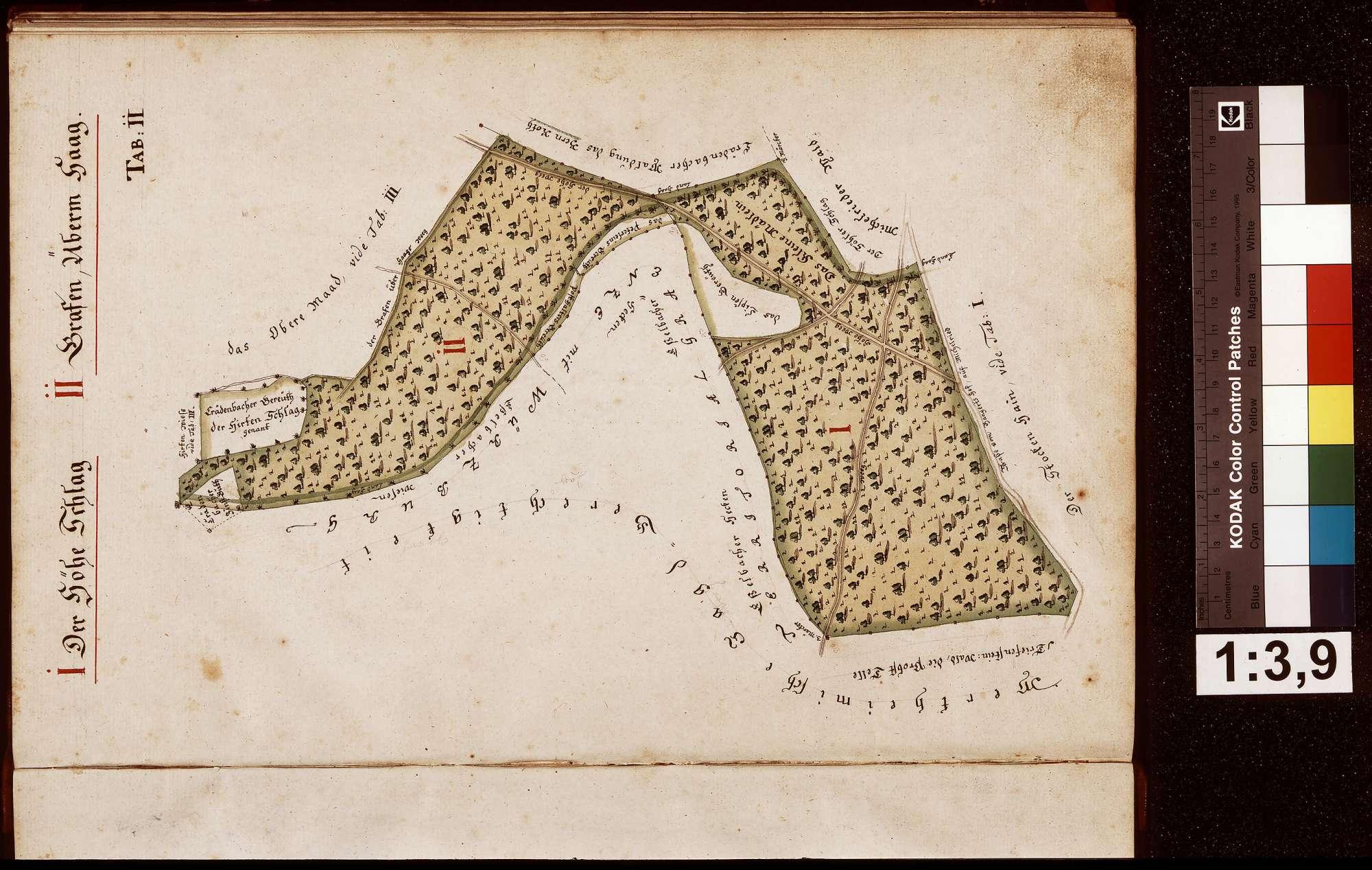 Geometrische Grundrisse über alle gemeinherschaftlichen Löwenstein-Wertheimischen Waldungen, welche sowohl in der Grafschaft Wertheim als auch außerhalb derselben gelegen, Bild 2