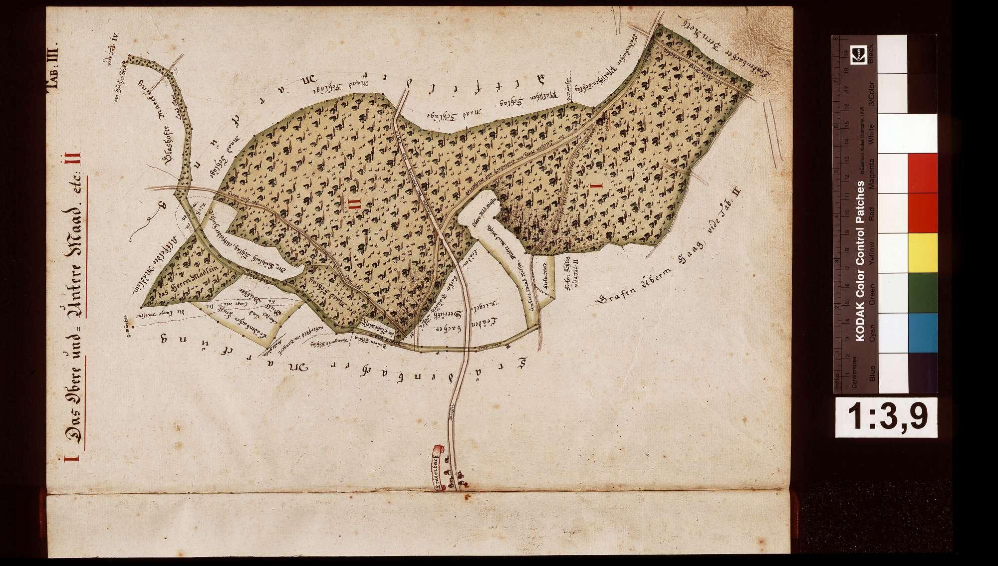 Geometrische Grundrisse über alle gemeinherschaftlichen Löwenstein-Wertheimischen Waldungen, welche sowohl in der Grafschaft Wertheim als auch außerhalb derselben gelegen, Bild 3