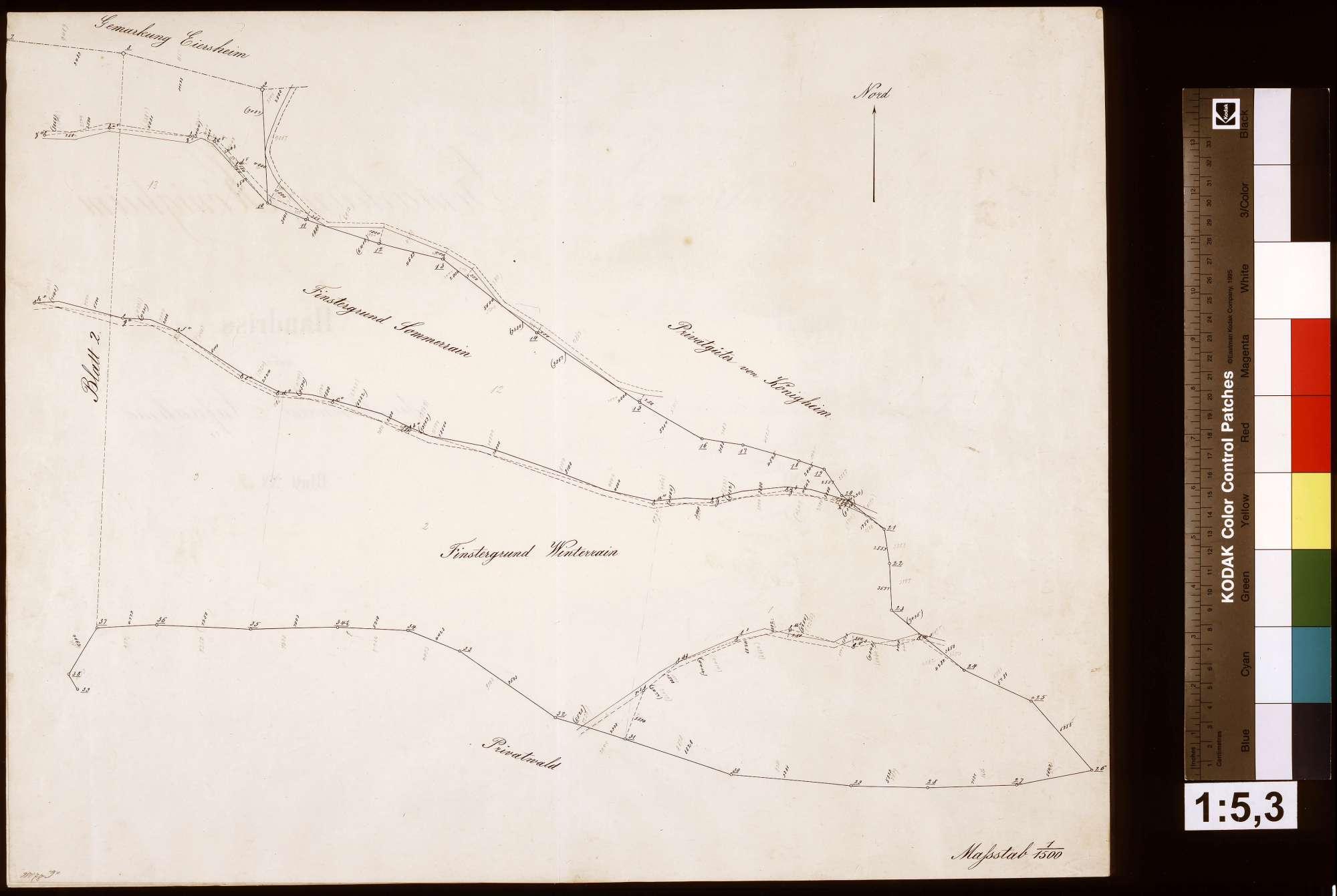 Stückweise Aufnahme der Gemarkung Königheim, Blatt 3