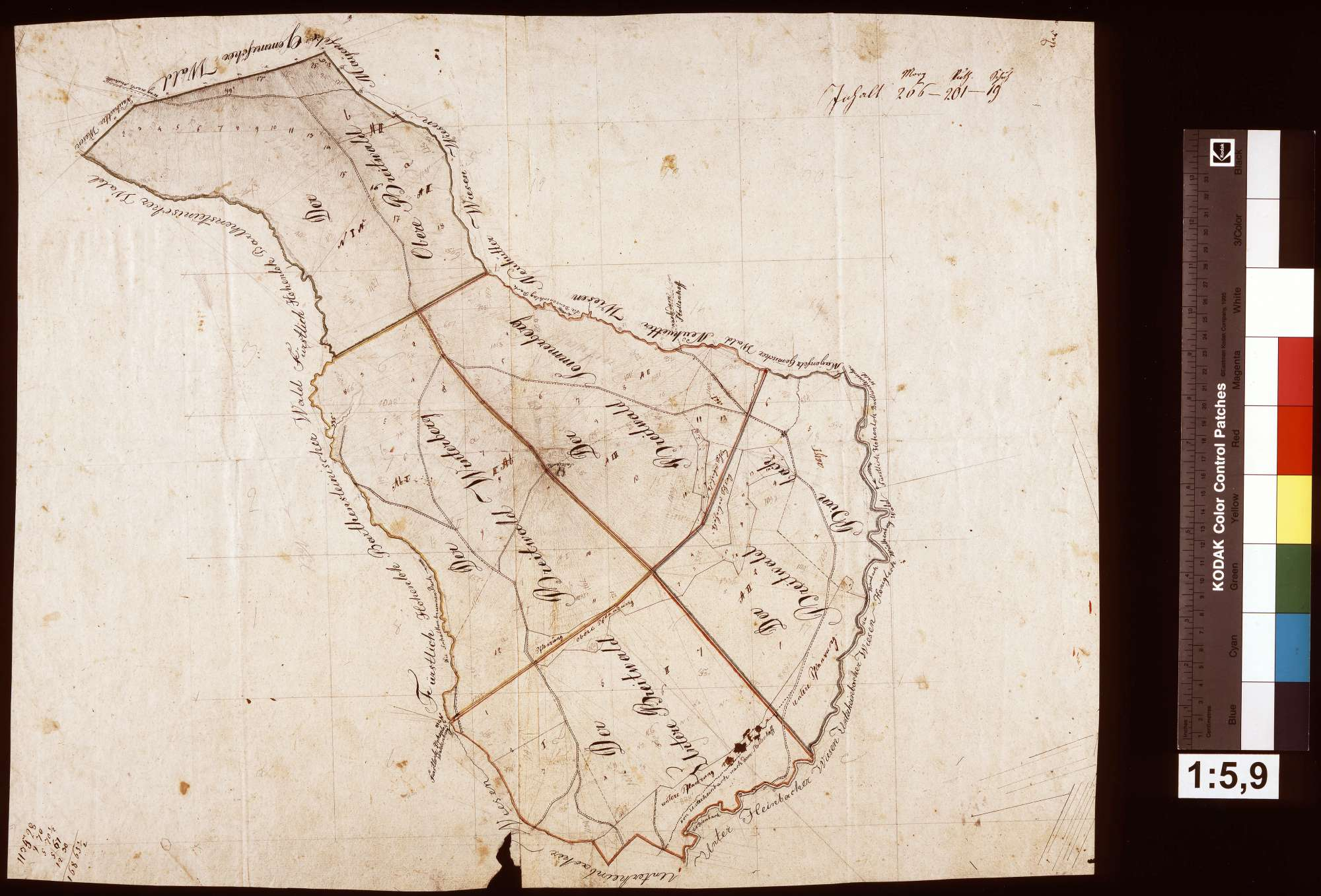 Plan über den Breitwald, Bild 1