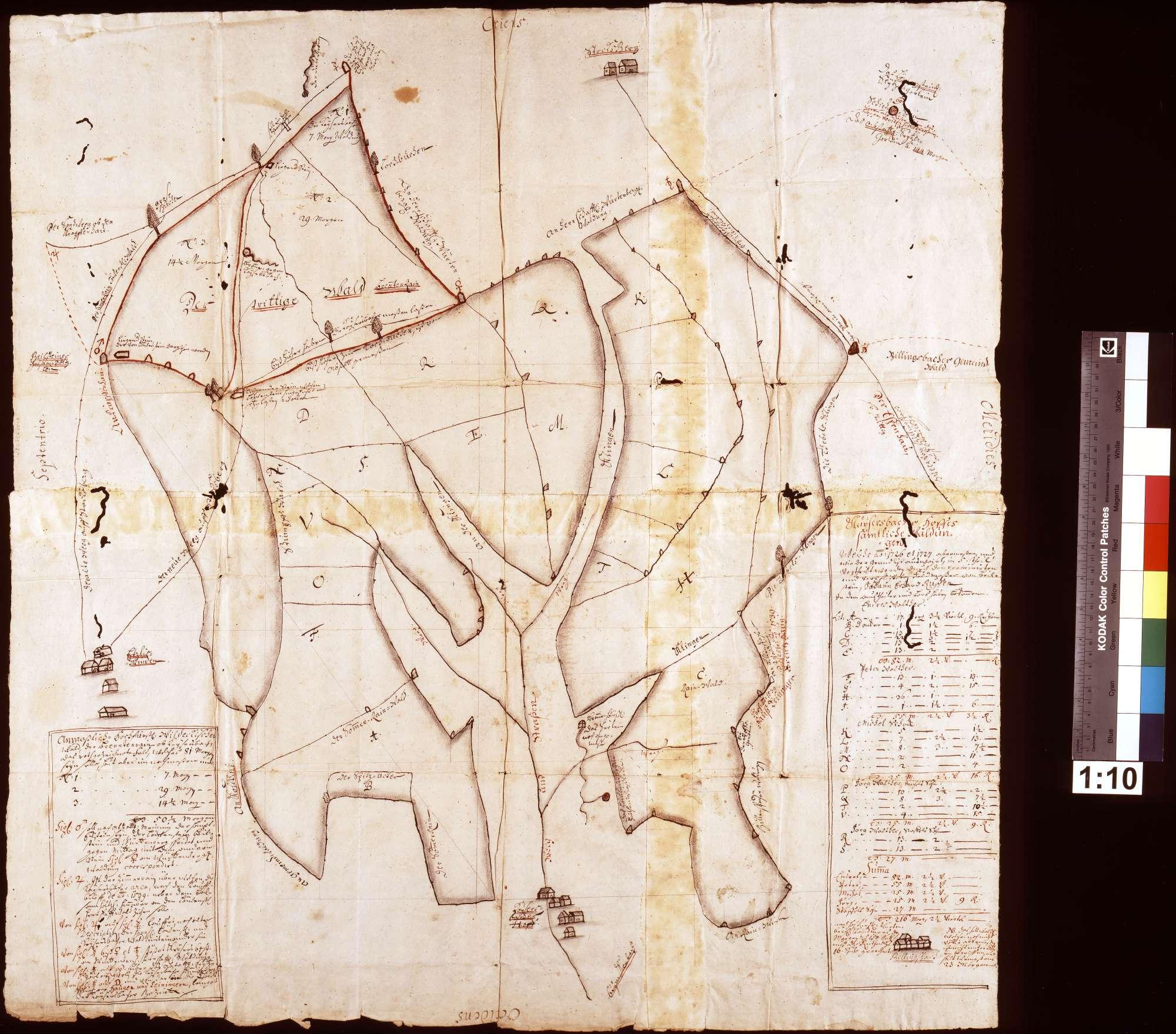 Grundriss über die Kaisersbacher Bauernwaldungen, so in anno 1726 zugegen gewesen ohne Zurechnung derer zu Ackerbau und Wies-Wachs darvon ausgerütteten Stücker, Bild 1