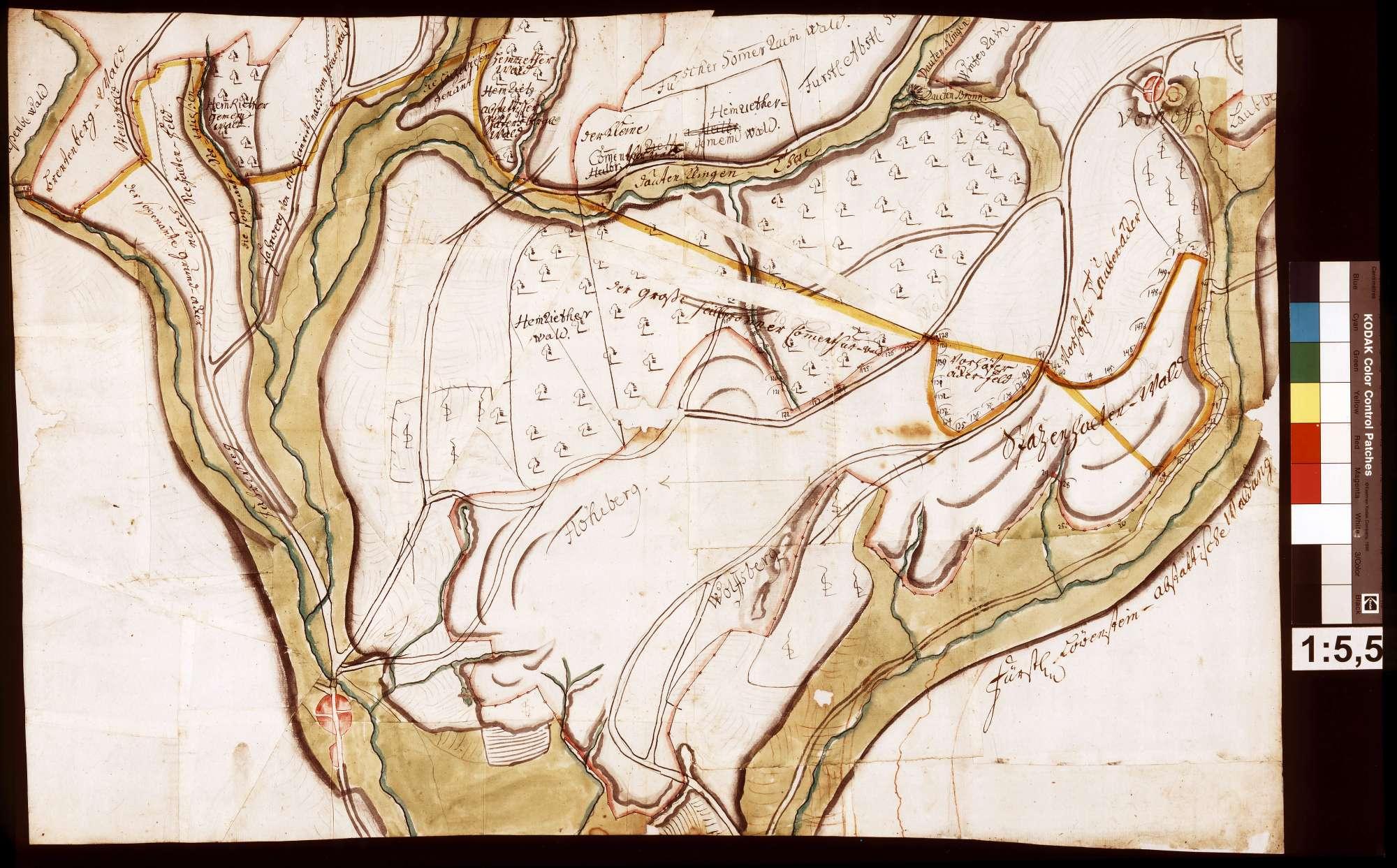 Walddistrikt Spatzenhalde, Bild 1