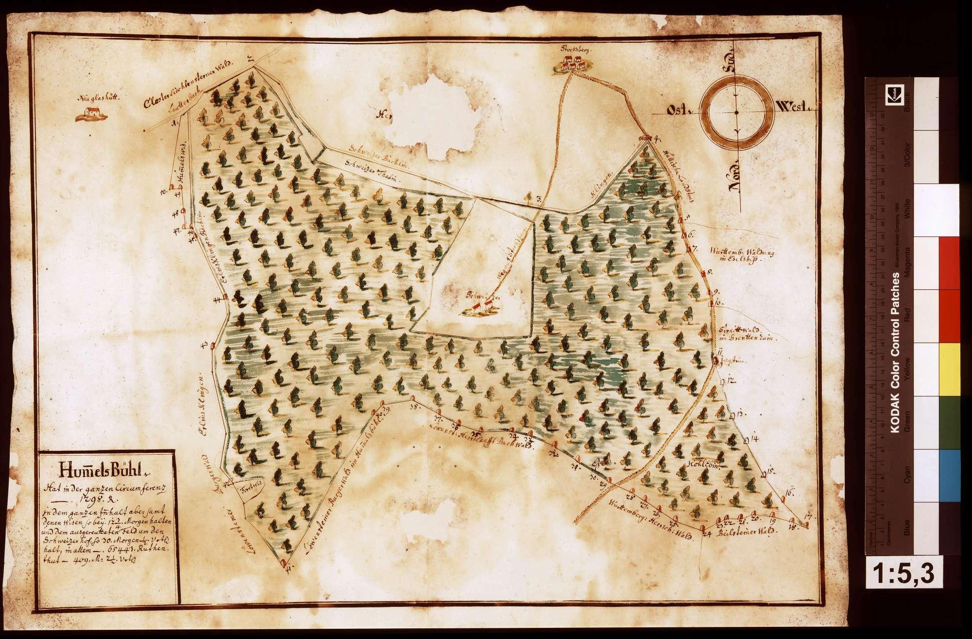 Walddistrikt Hummelsbühl, Bild 1