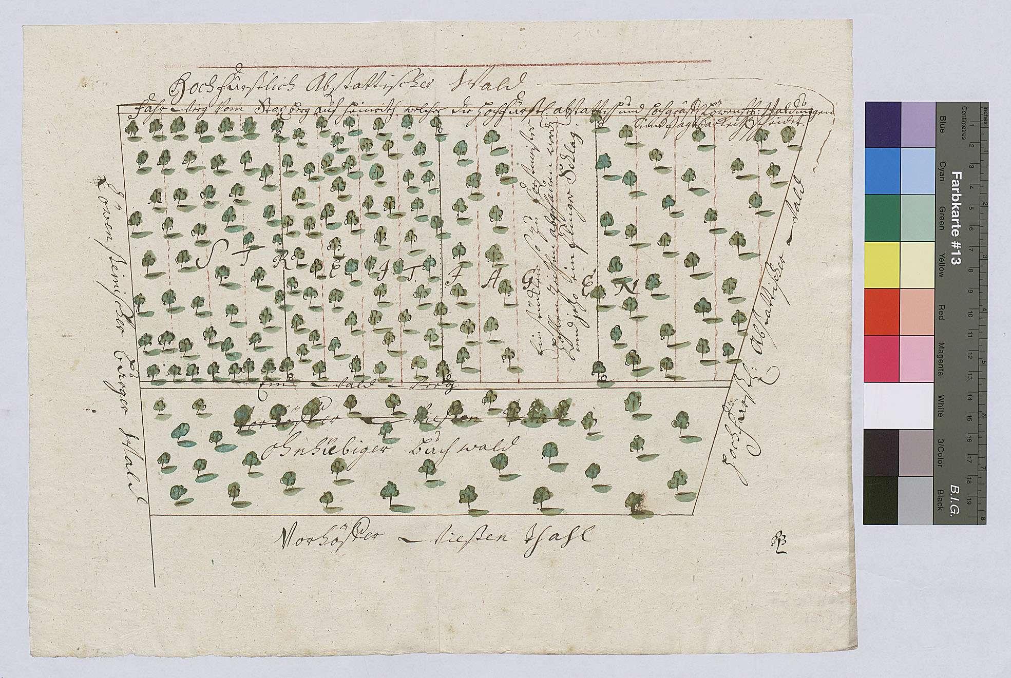 Streitigkeiten wegen des Jagens zwischen dem Abstätter Wald und den Vorhöfer Wiesen, Bild 1