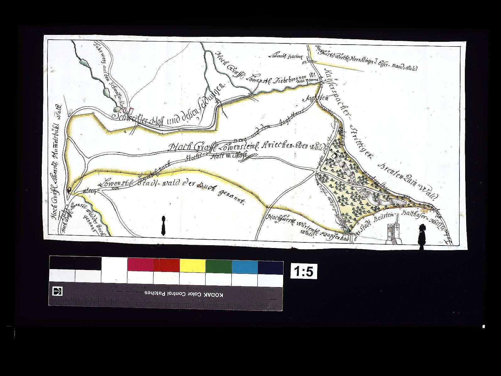 Streitigkeiten zwischen Löwenstein und den Bauern von Kaisersbach wegen des Brenntenrain- und Kriechenebenenwaldes, Bild 1
