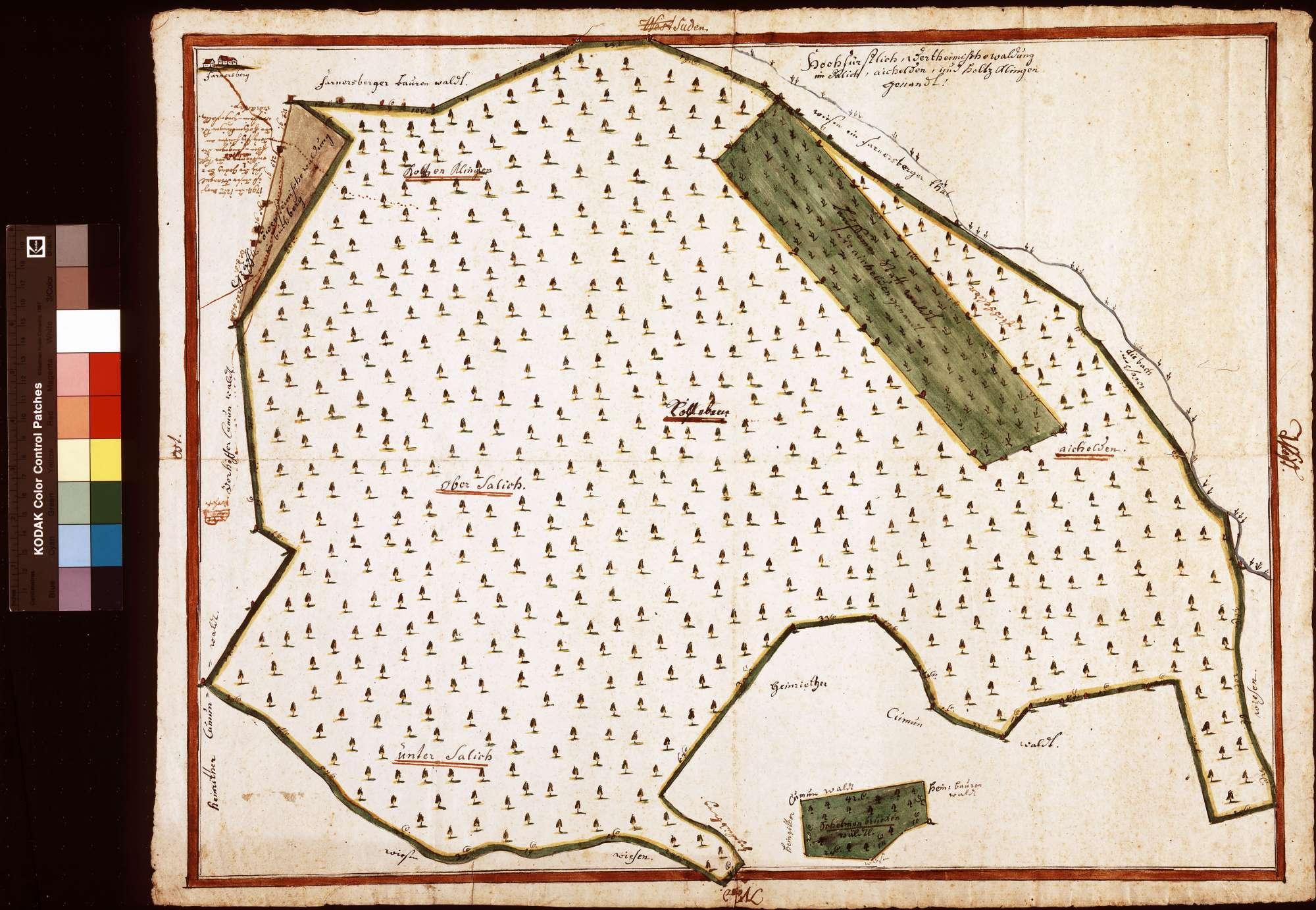 Saalig (Salich), Eichhalden (Aichelden) und Holzklingen (Inselkarte), Bild 1