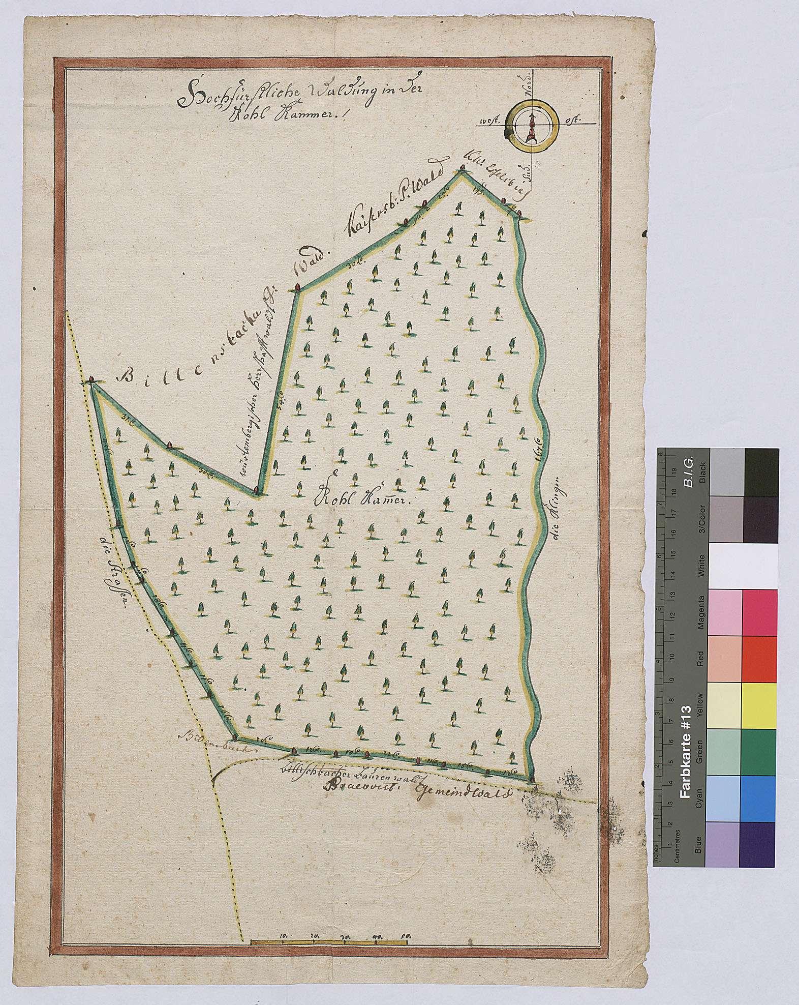 Waldung in der Kohlkammer (Inselkarte), Bild 1
