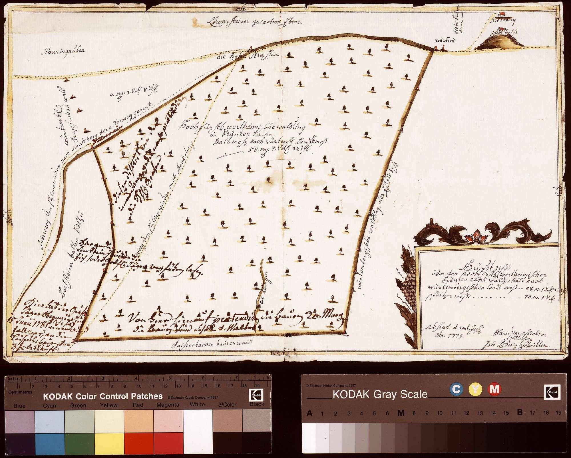 Grundriss über den Branntenrainwald (Bräntenraihnwaldt) (Inselkarte), Bild 1