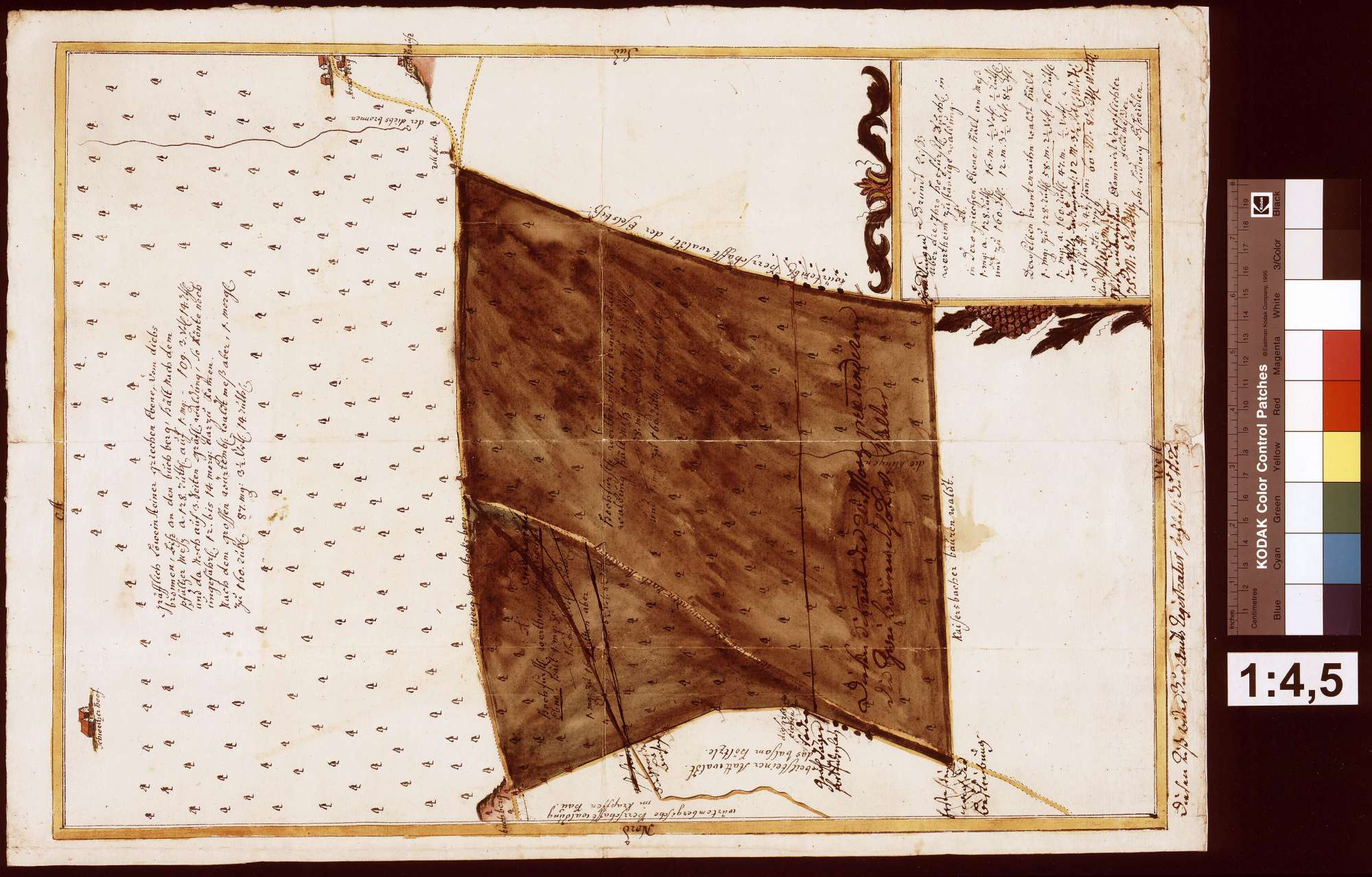 Grundriss über die Waldung [Kriechenebene (Griechenebene) und Branntenrain (Brantenraihn)] (Inselkarte), Bild 1