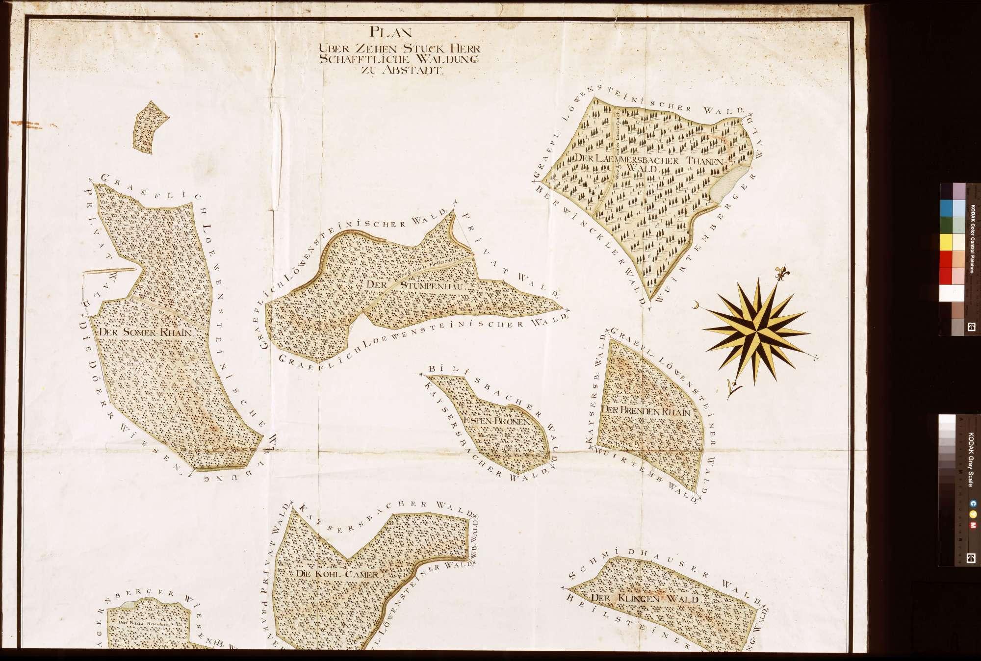 Zehn Stück Waldung zu Abstatt (Inselkarte), Bild 1