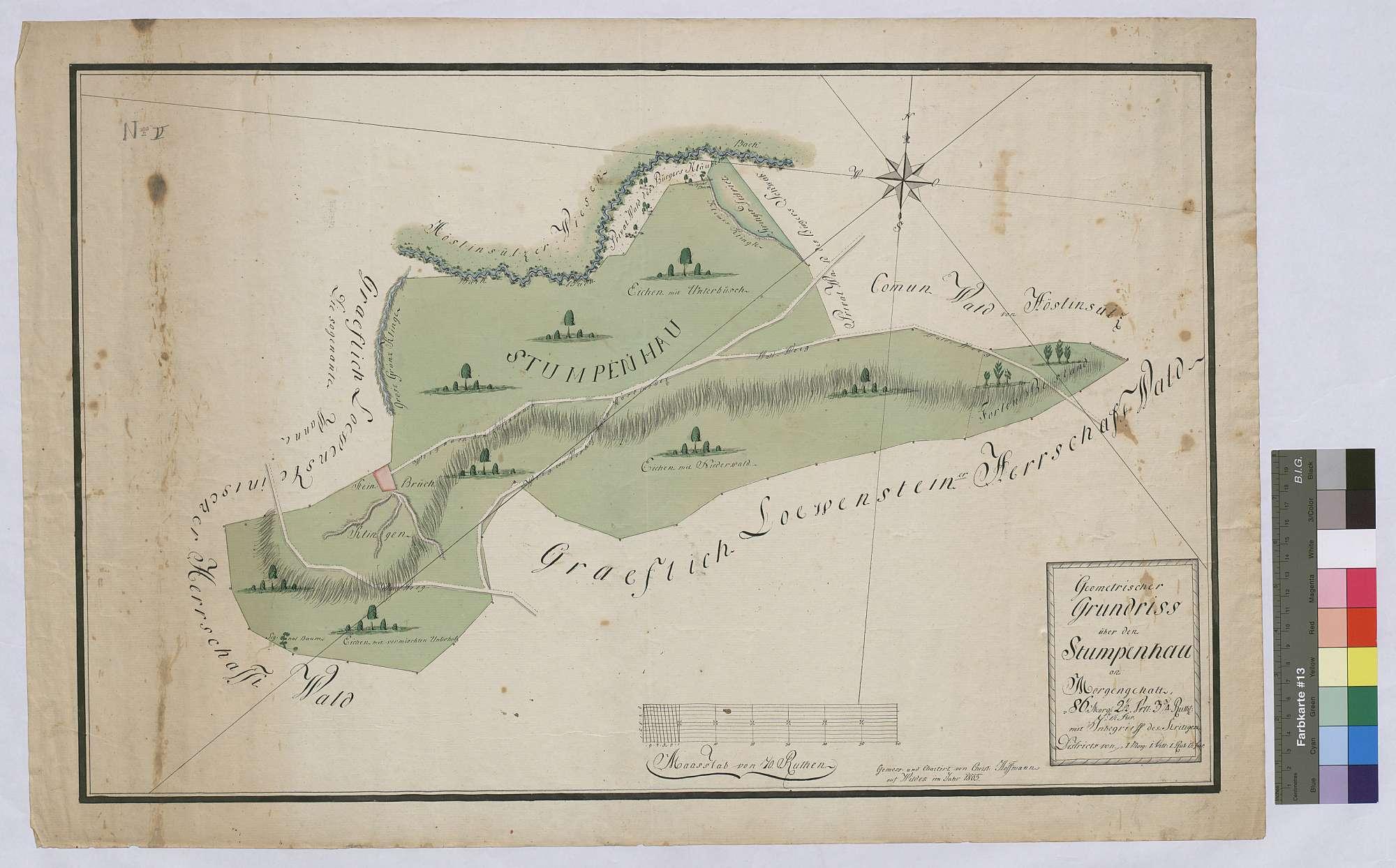 Geometrischer Grundriss über den Stumpenhau mit dem strittigen Distrikt (Inselkarte), Bild 1