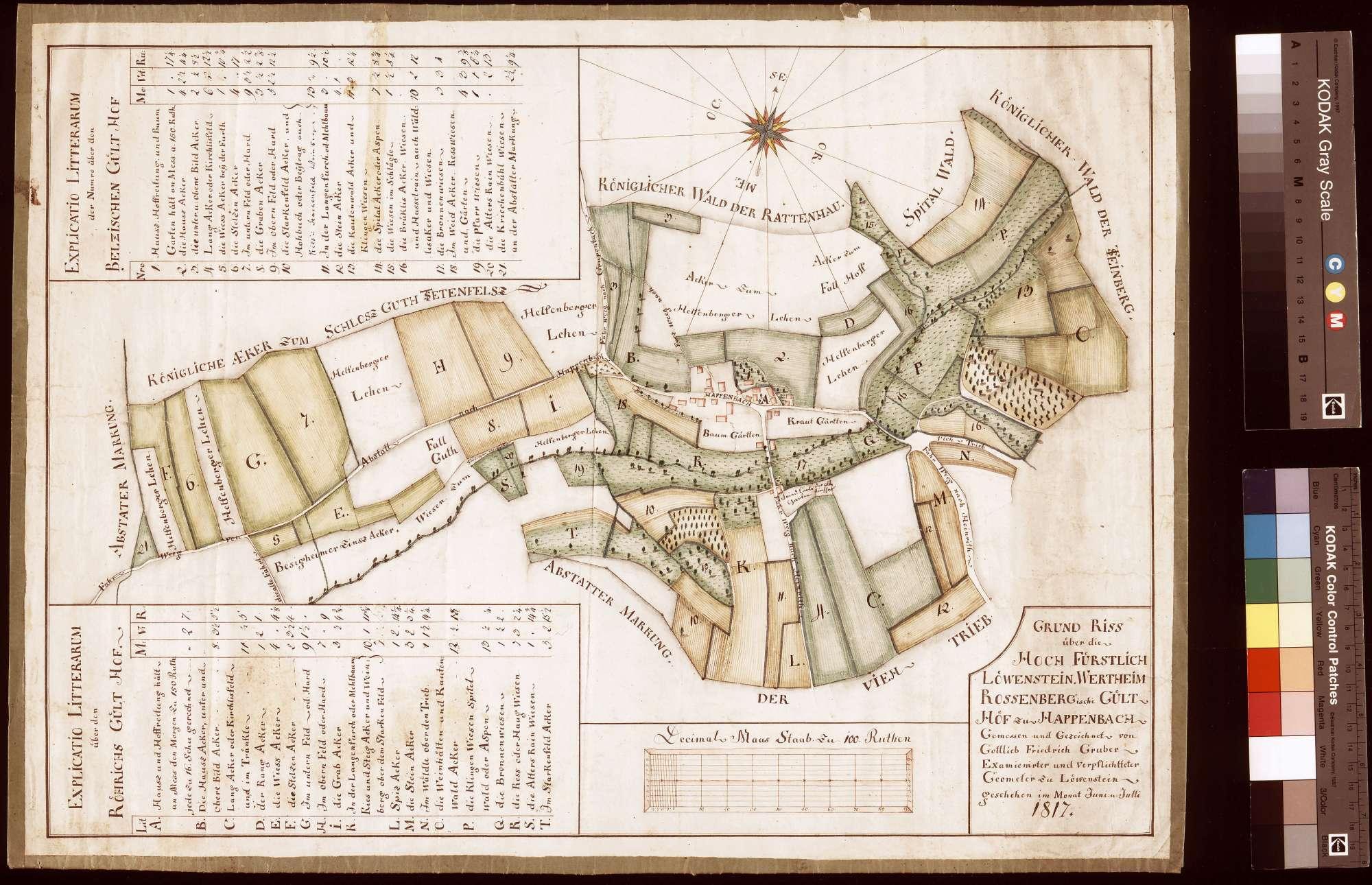 Grundriss über die Gülthöfe zu Happenbach (Inselkarte), Bild 1