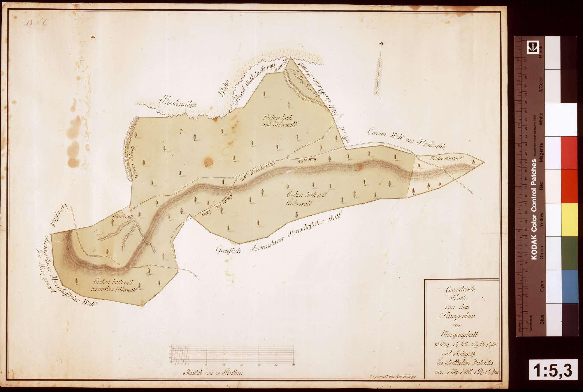 Geometrische Karte von dem Stumpenhau mit dem strittigen Distrikt (Inselkarte), Bild 1