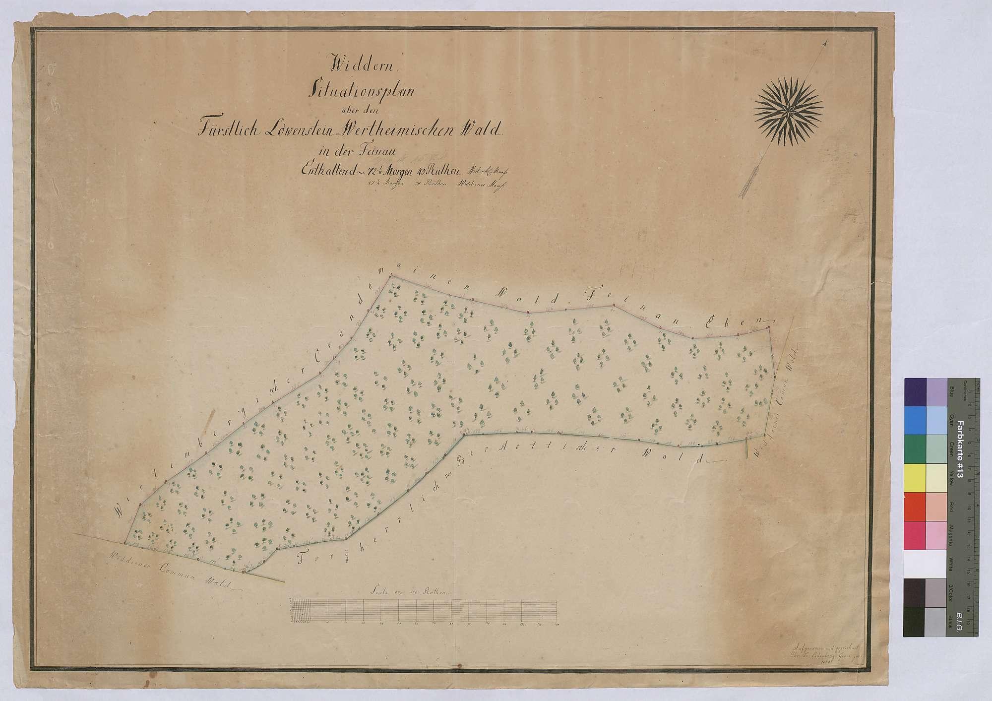 Widdern: Situationsplan über den löwenstein-wertheimischen Wald in der Feinau (Inselkarte), Bild 1