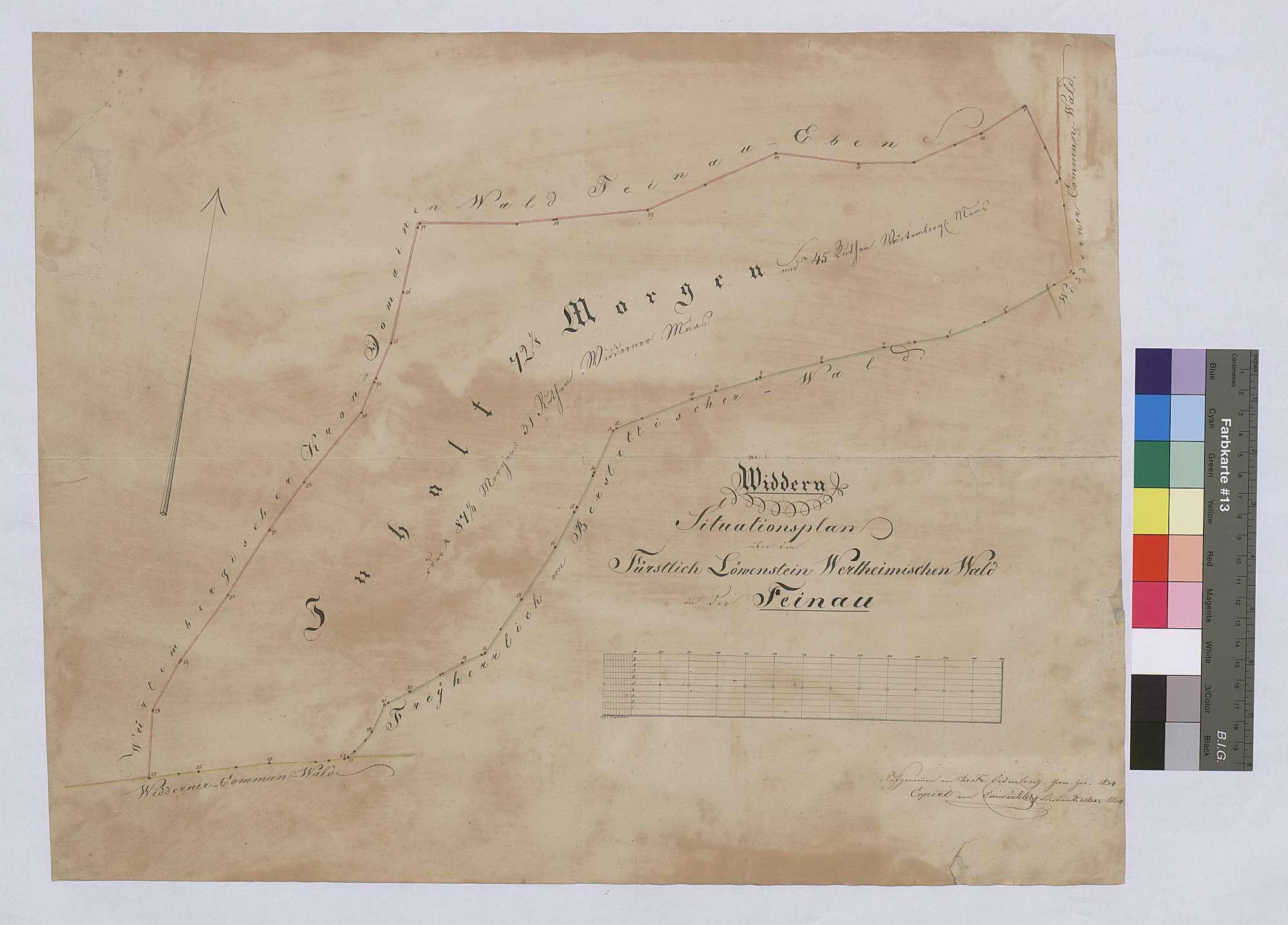 Widdern: löwenstein-wertheimischer Wald in der Feinau (Inselkarte), Bild 1