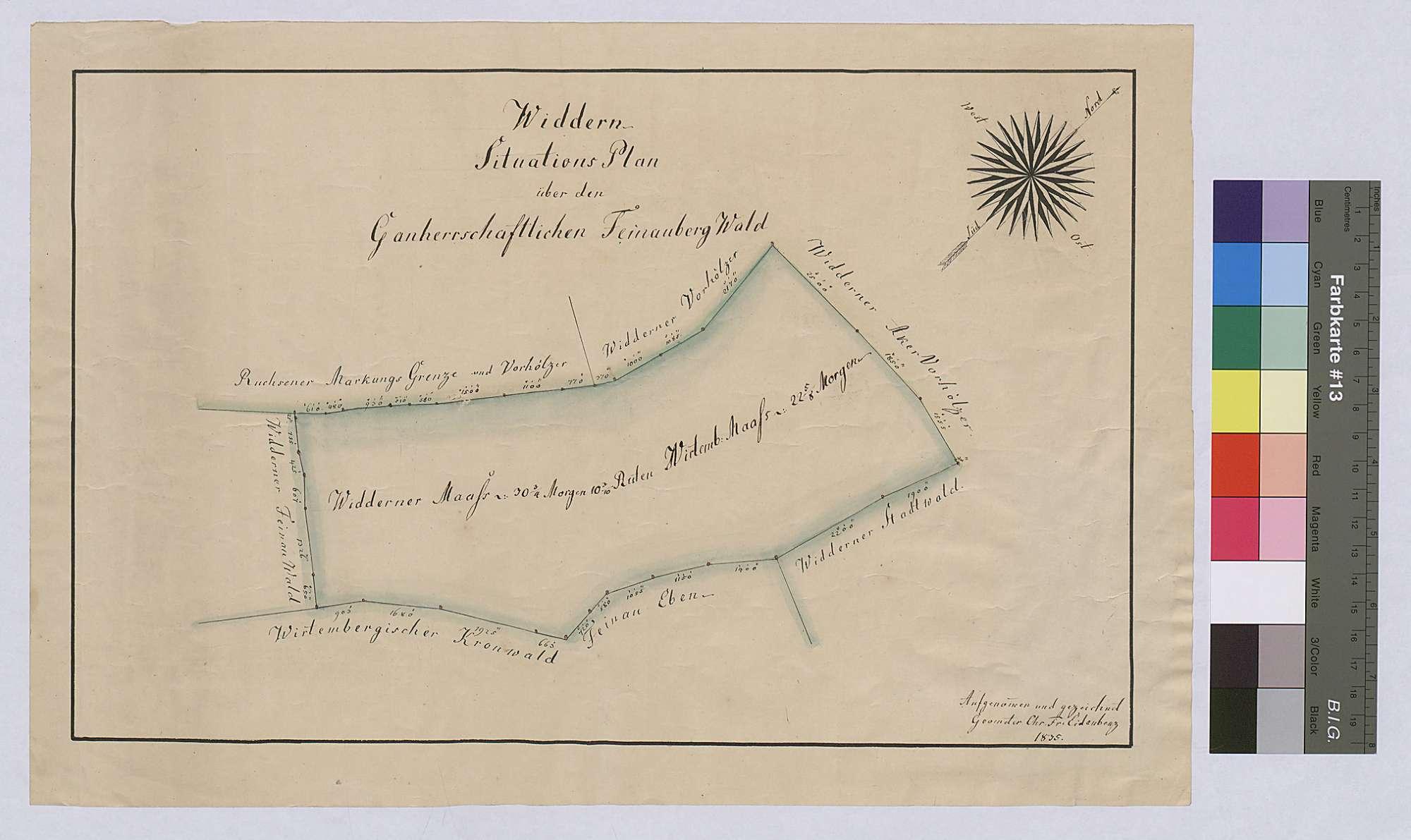 Widdern: Situationsplan über den ganherrschaftlichen Feinaubergwald (Inselkarte), Bild 1