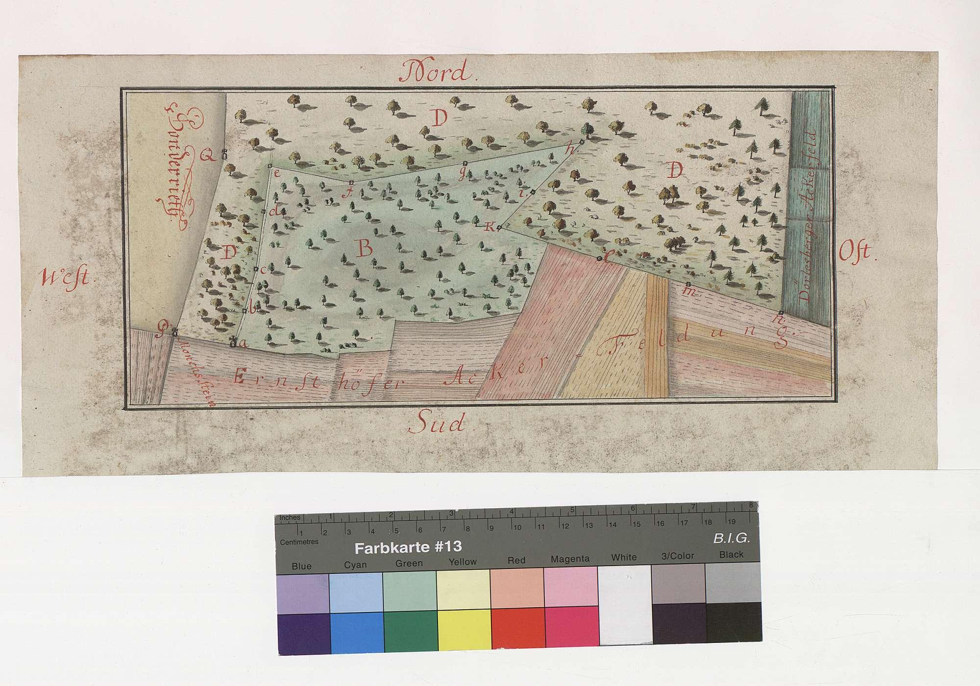 Bronnbachisches Markungsbuch: [Festlegung der Gemarkungsgrenzen: Dörlesberg - Bronnbach], Bild 1