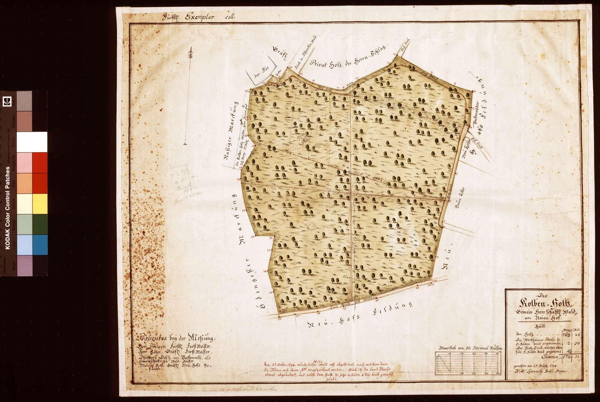 Kolbenholtz: gemeinschaftlicher Wald am Neuen Hof (Inselkarte), Bild 1