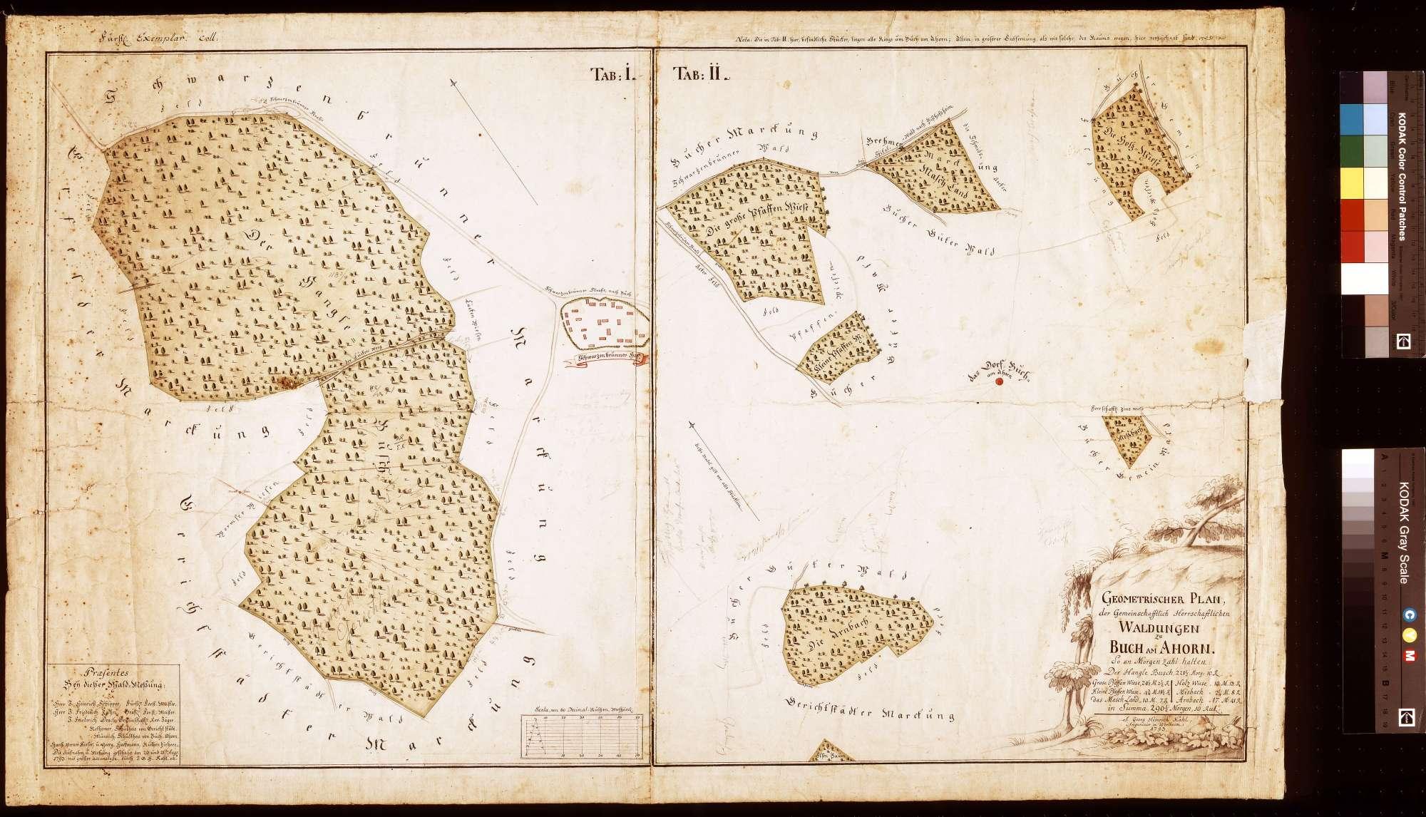 Geometrischer Plan der gemeinschaftlichen Waldungen zu Buch am Ahorn, Bild 1
