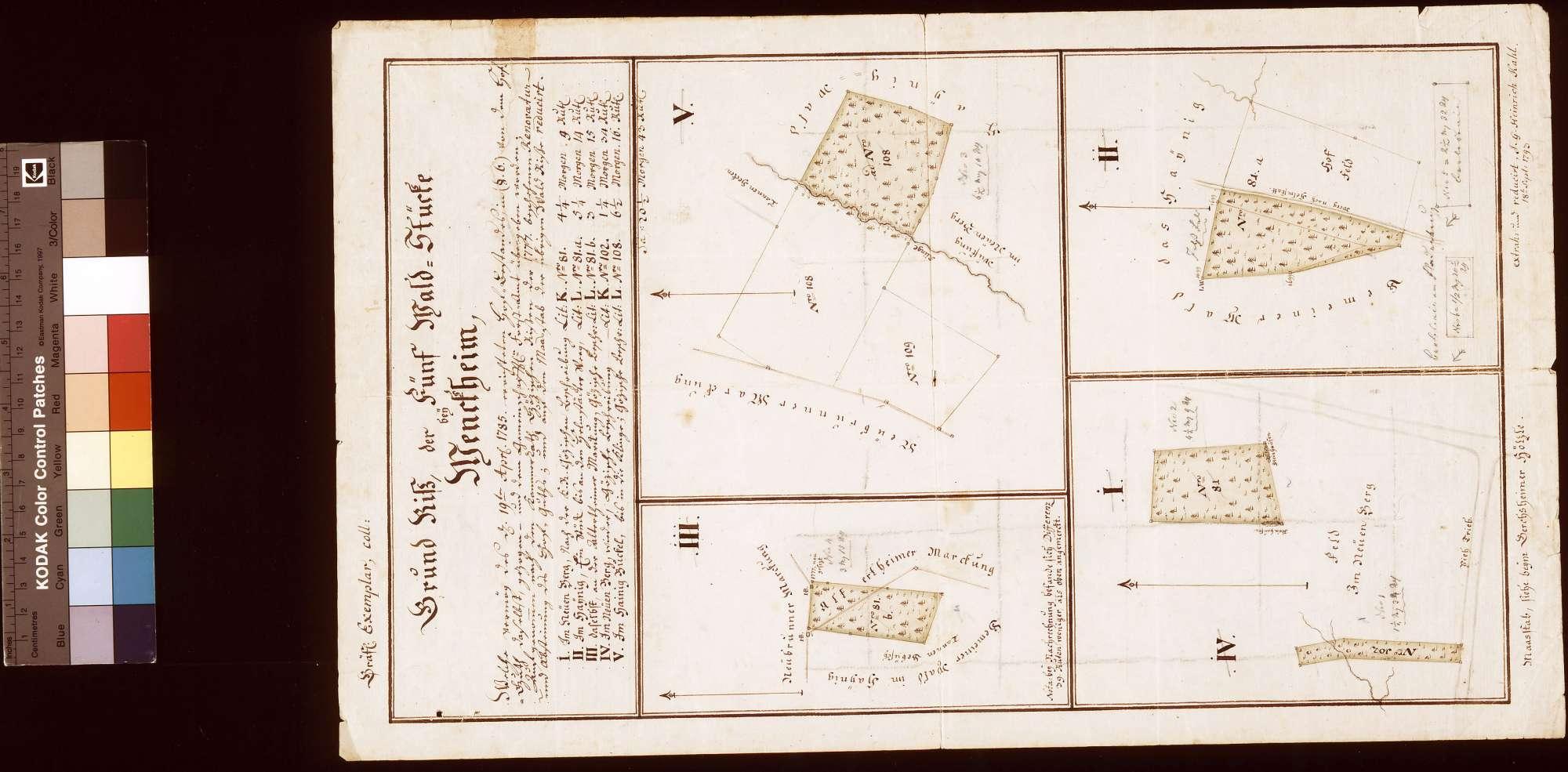Grundriss der fünf Waldstücke bei Wenkheim, Bild 1