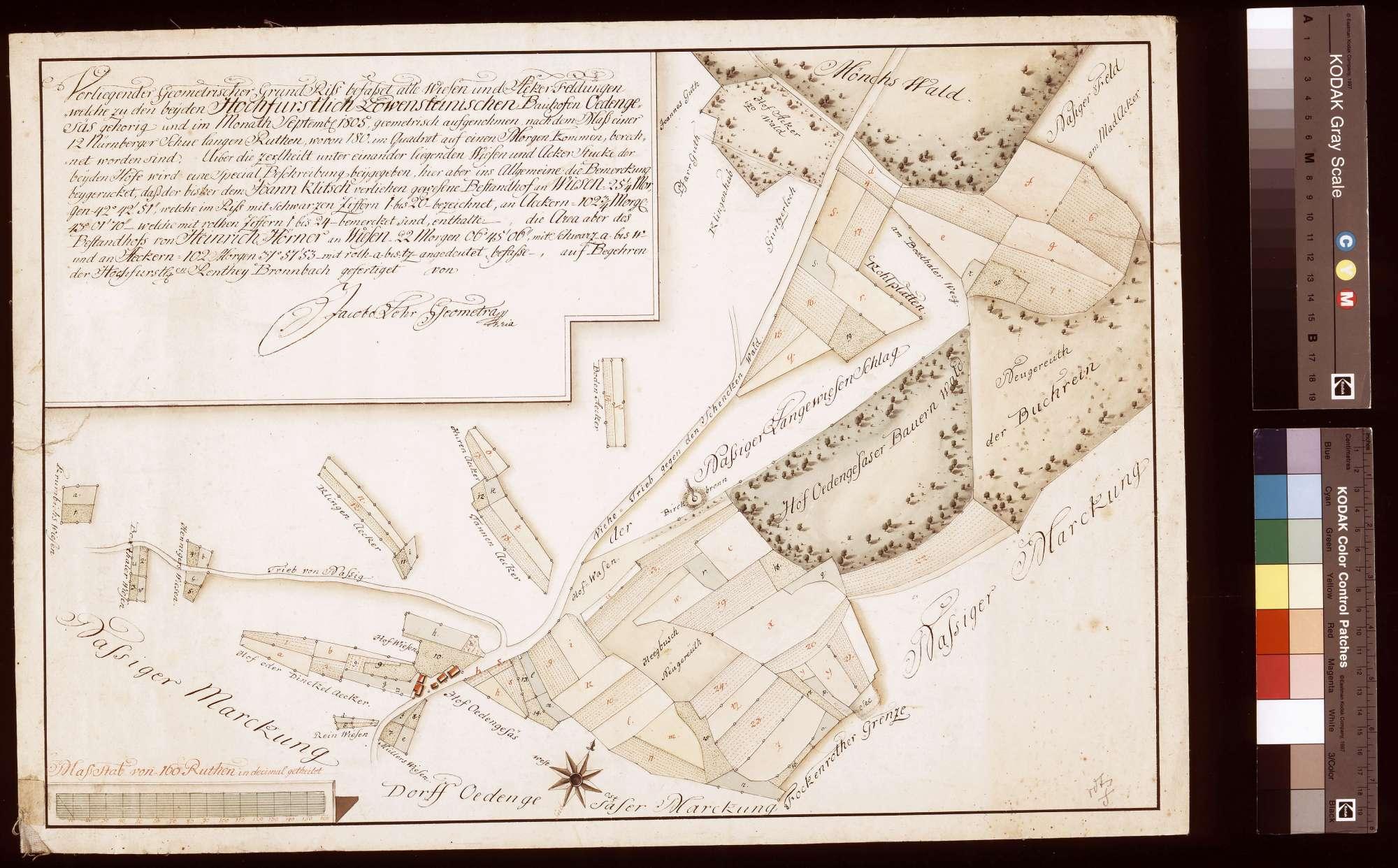 [Wiesen und Äcker der beiden Bauhöfe Ödengesäß] (Inselkarte), Bild 1