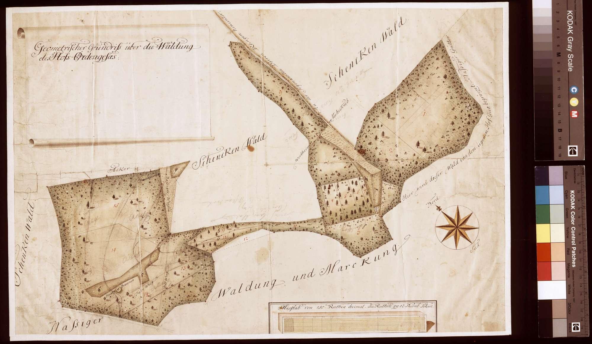Geometrischer Grundriss über die Waldungen des Hofguts Ödengesäß (Inselkarte), Bild 1