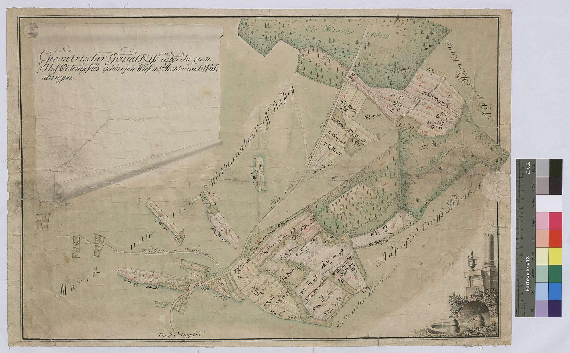 Geometrischer Grundriss über die zum Hofgut Ödengesäß gehörigen Wiesen, Äcker und Waldungen (Inselkarte), Bild 1