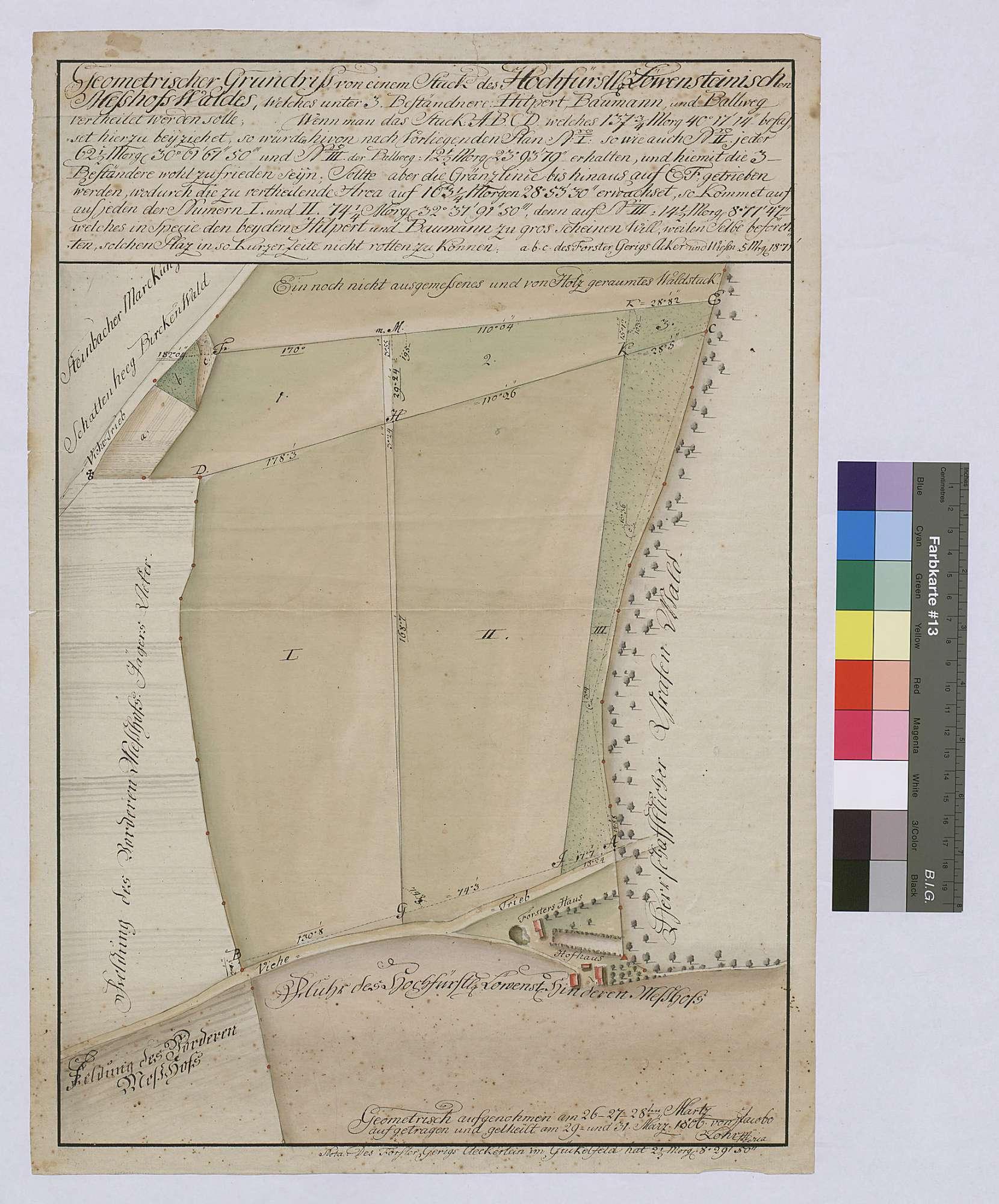 Geometrischer Grundriss von einem Stück des Meßhofswaldes, welches unter drei Beständern (Hilpert, Baumann und Ballweg) [zur Rodung] verteilt werden soll (Inselkarte), Bild 1