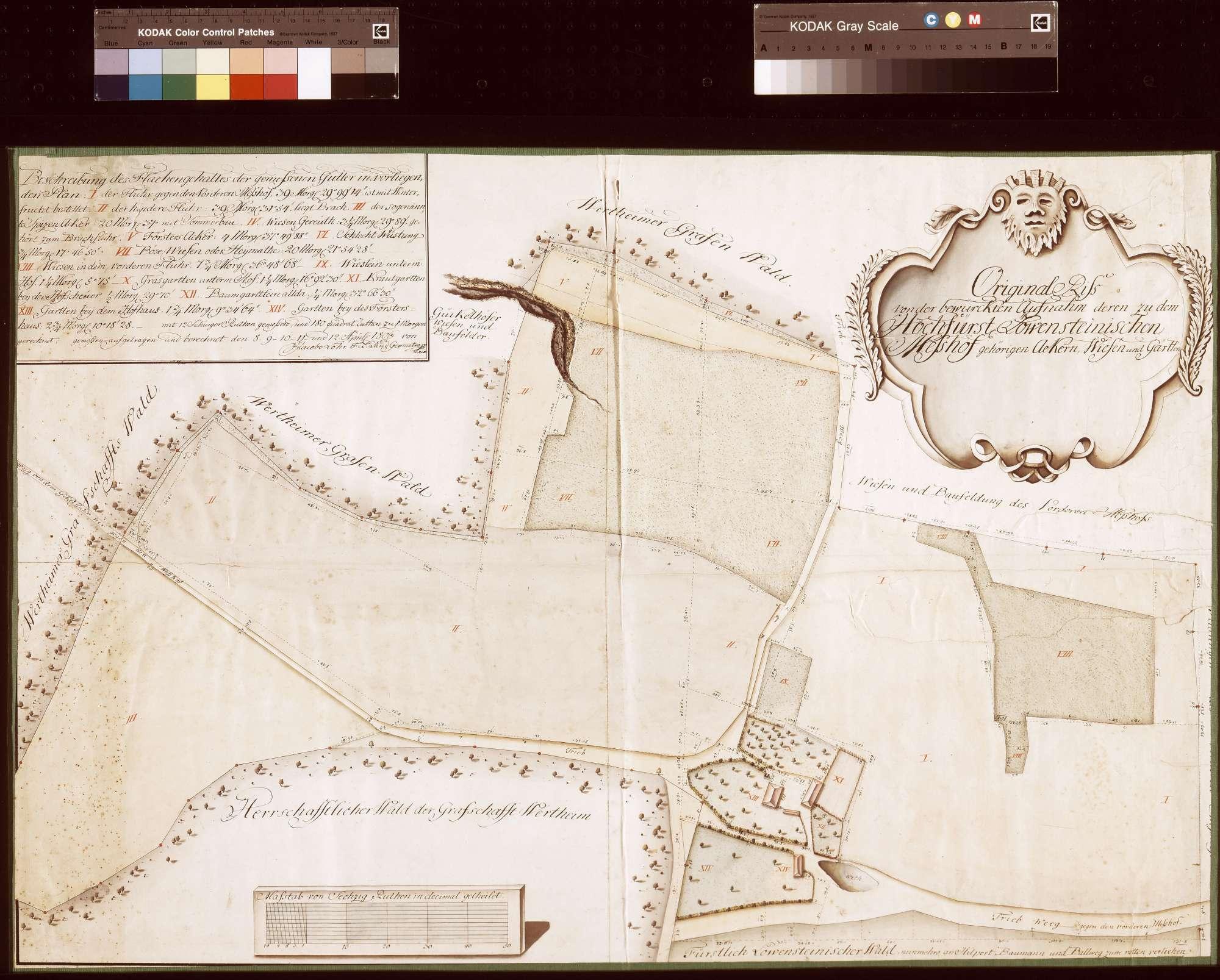 Riss von der Aufnahme der zu dem [Hinteren] Meßhof gehörigen Äcker, Wiesen und Gärten (Inselkarte), Bild 1