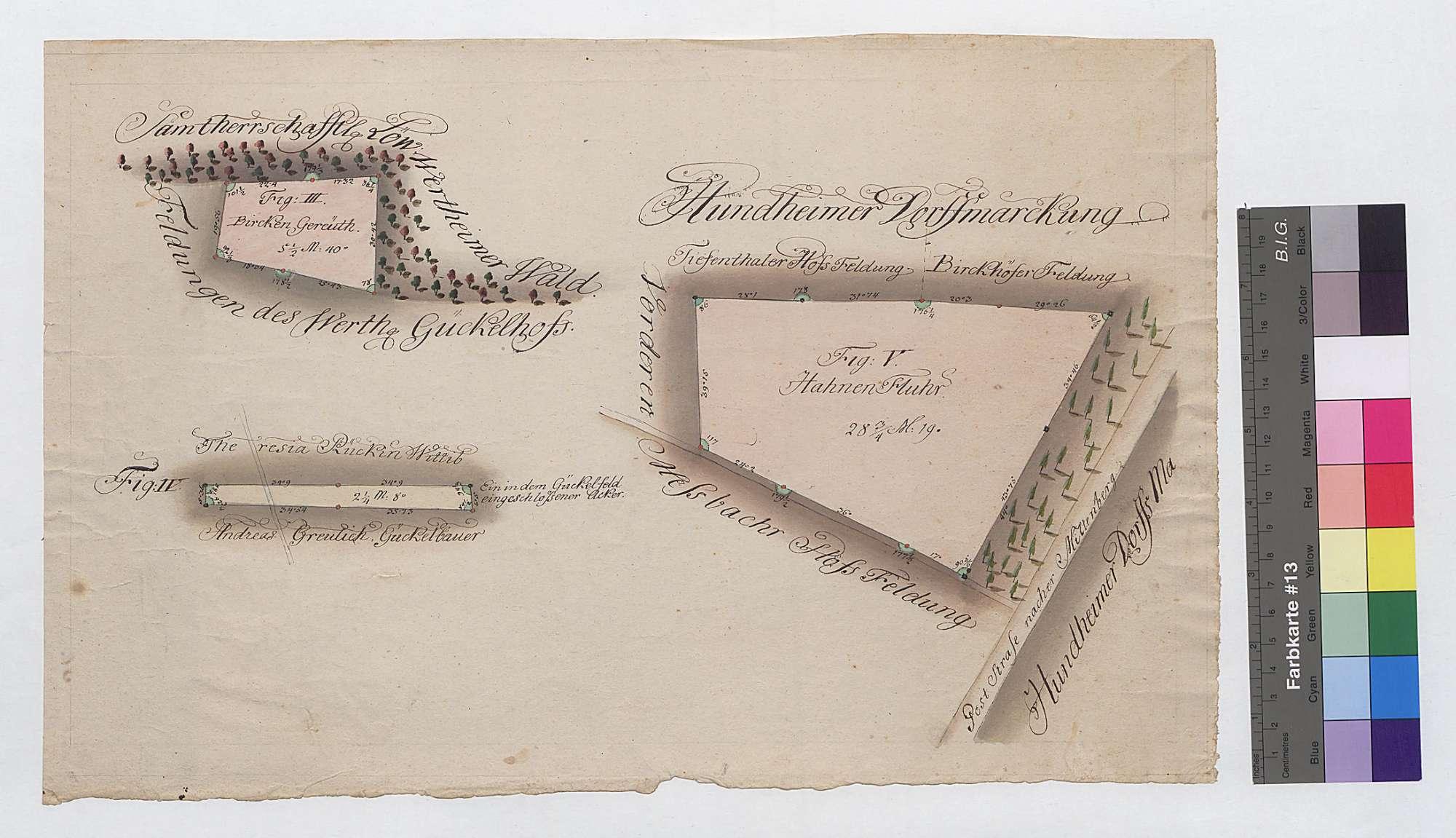 [Neuabsteinung einiger zum Hinteren Meßhof gehörenden Flurstücke:] Der sogenannte Gückel-Flur (Inselkarte), Birken-Gereut, Ein in dem Gückelfeld eingeschlossener Acker, Hahnen-Flur (Inselkarte), Bild 1