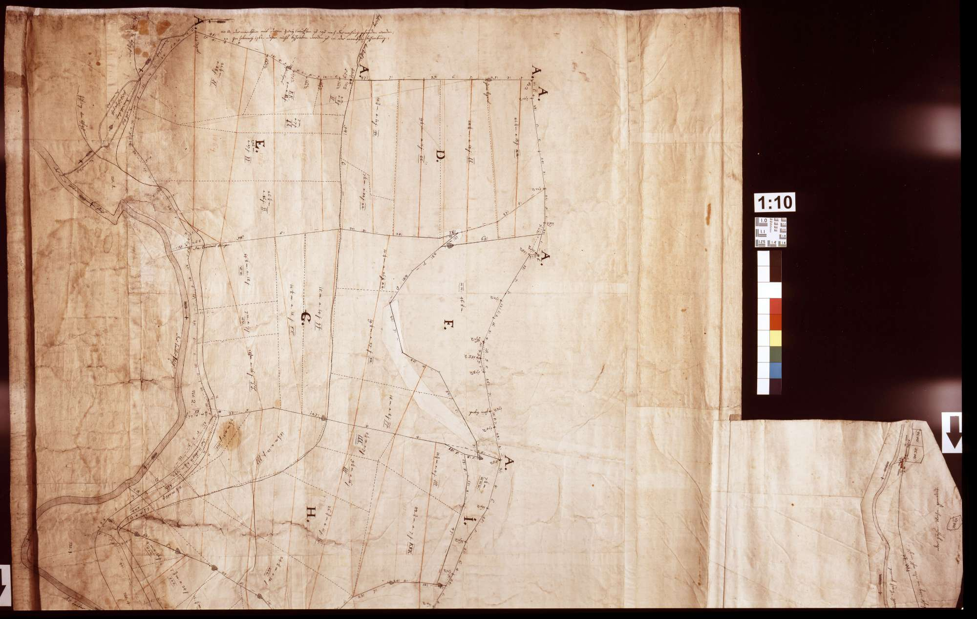 [Vermessung des bronnbachischen Schönertwaldes] (Inselkarte], Bild 1