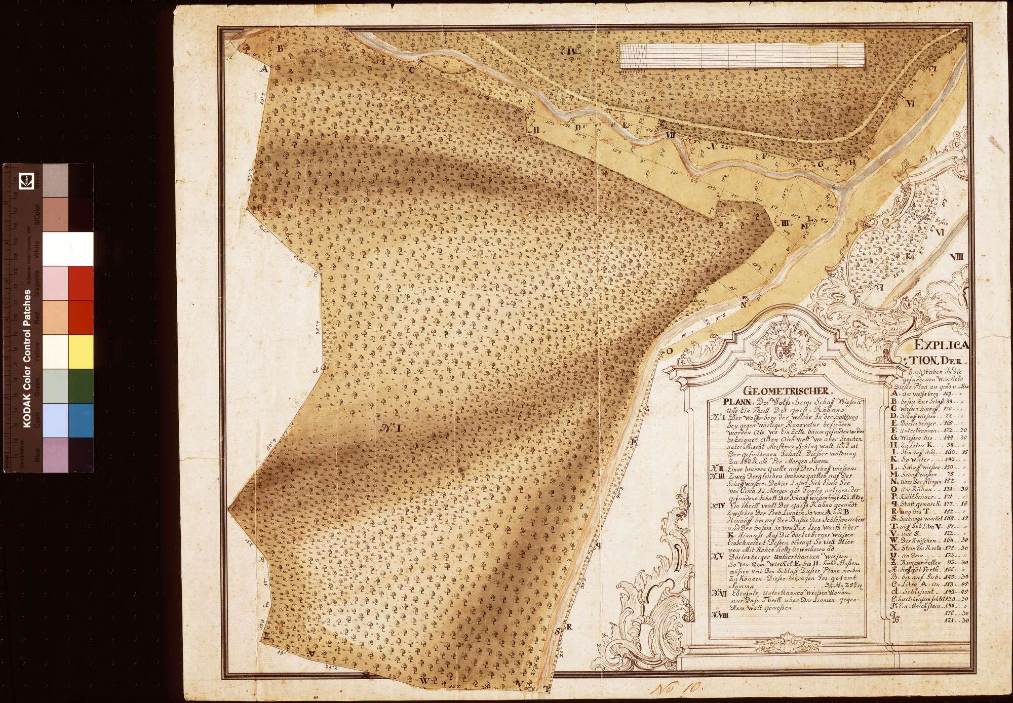 [Geometrischer Plan des Wolfsbergs, der Schafwiesen und eines Teils des Geißrains] (Inselkarte), Bild 1