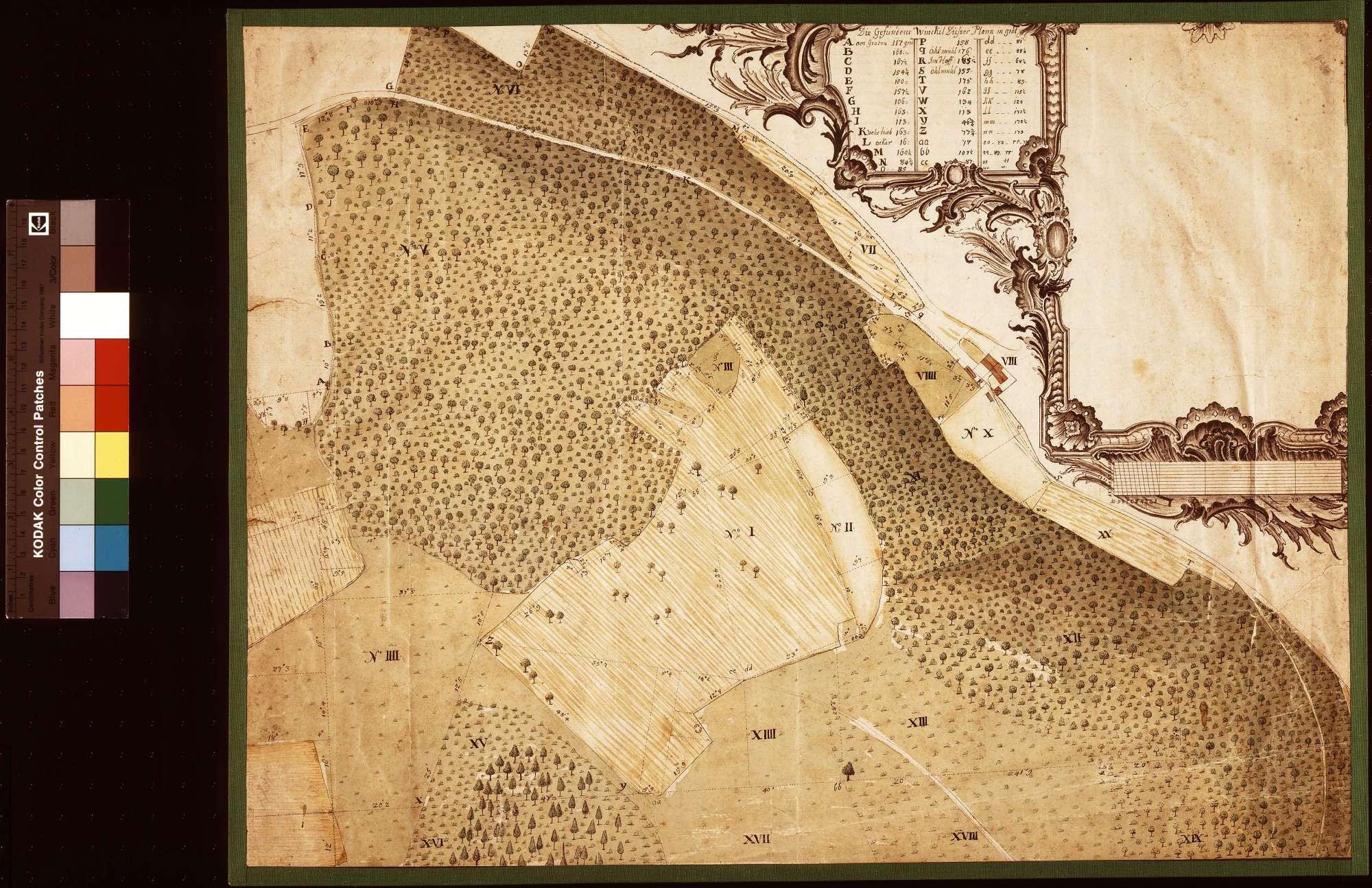 [Geometrischer Plan des bei der Ölmühle gelegenen Teils des Geißrains] (Inselkarte), Bild 1