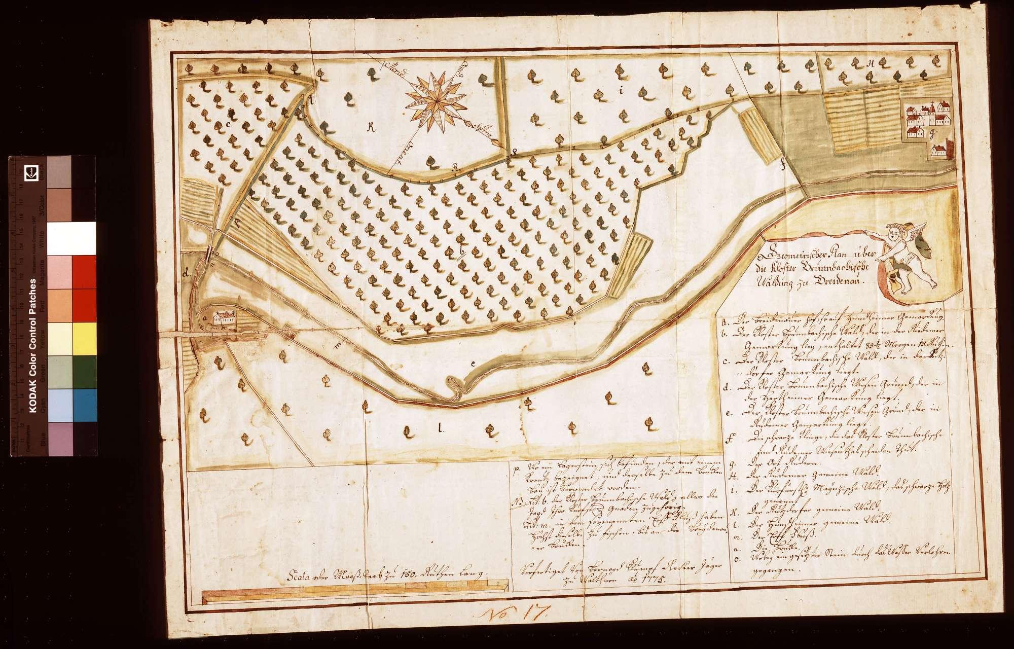 Geometrischer Plan über die bronnbachische Waldung zu Breitenau, Bild 1