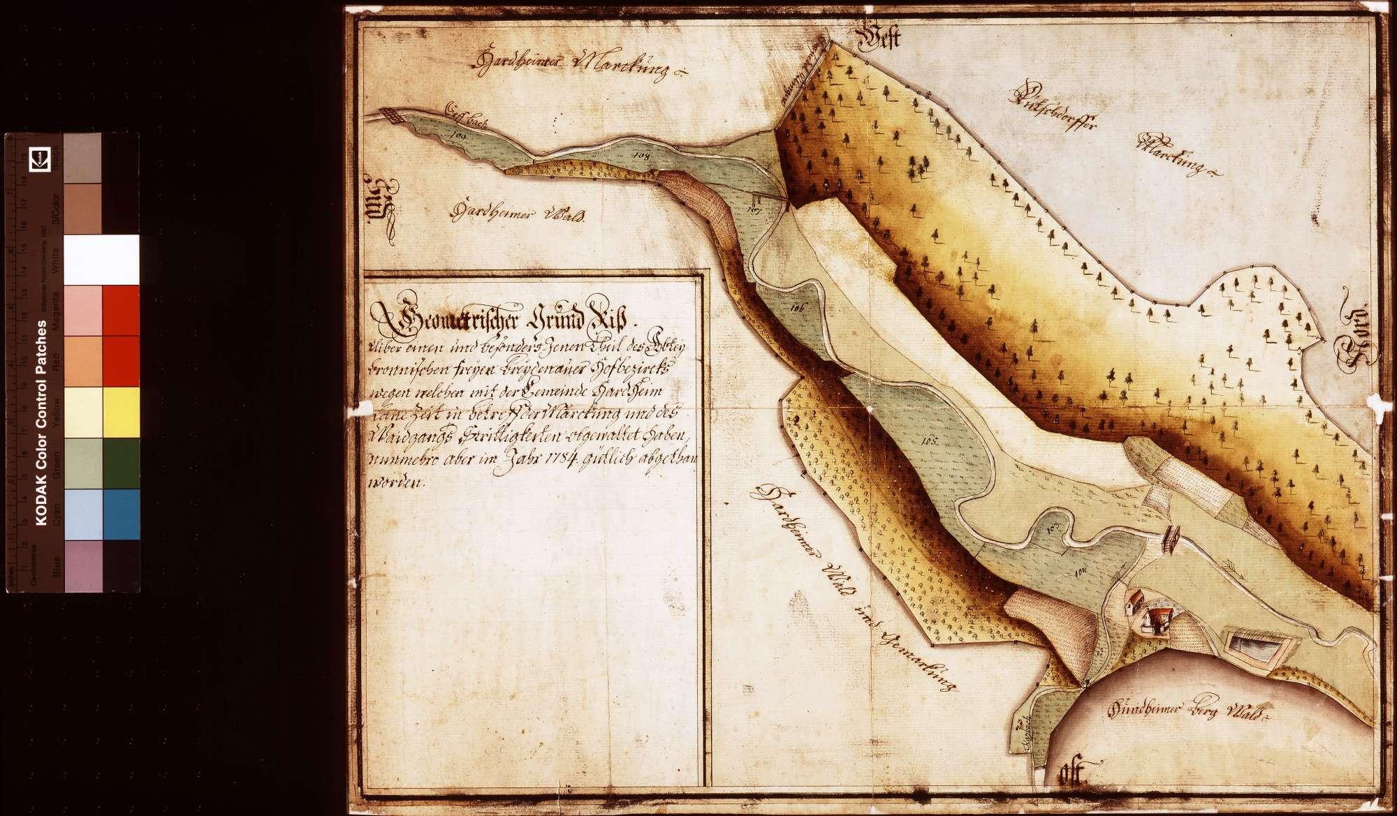 Geometrischer Grundriss jenes Teils des bronnbachischen Breitenauer Hofbezirks, wegen welchem mit der Gemeinde Hardheim lange Zeit in Betreff der Markung und des Weidgangs Strittigkeiten bestanden haben (Inselkarte), Bild 1