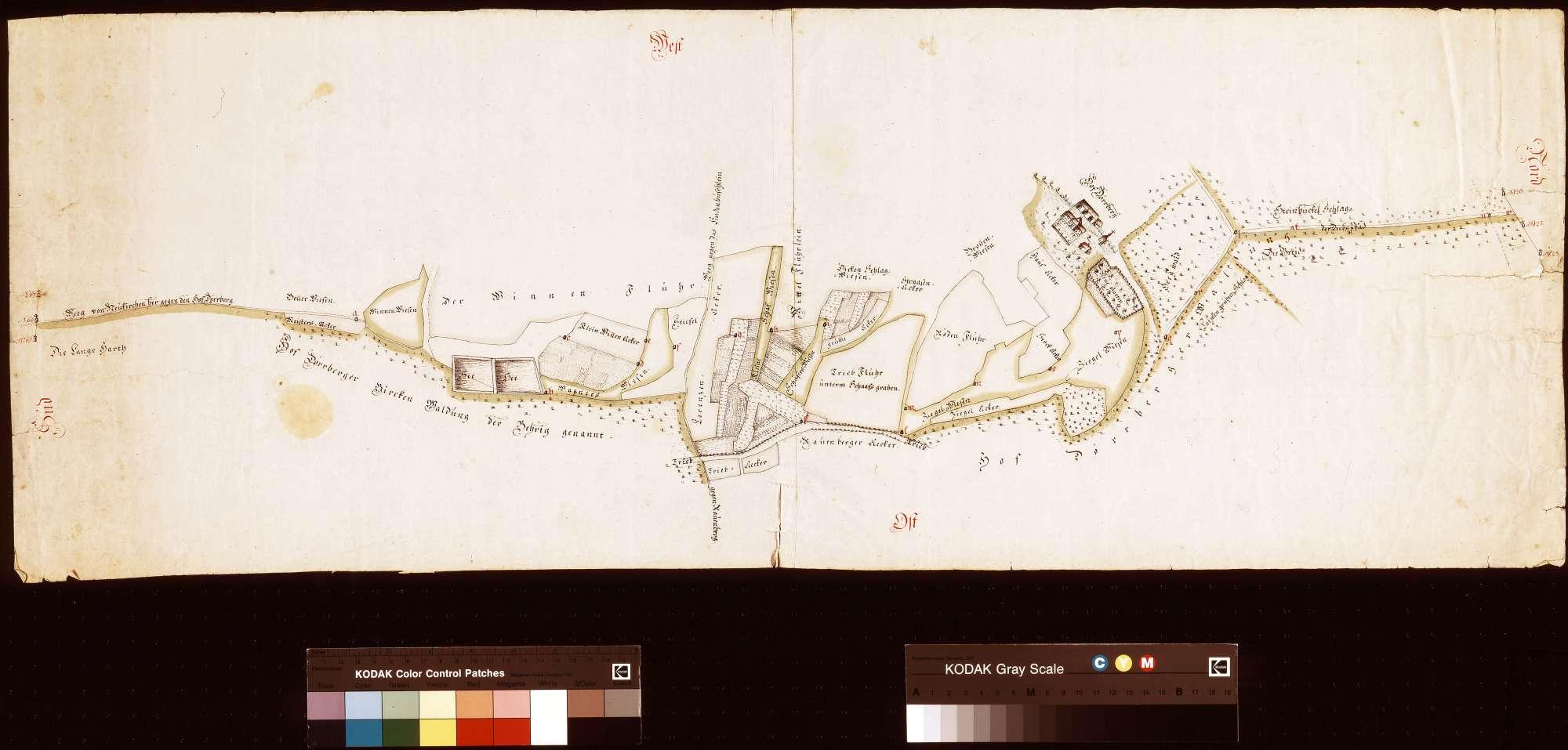 [Neuvermessung der Felder und Wiesen des Dürrhofs] (Inselkarte), Bild 1