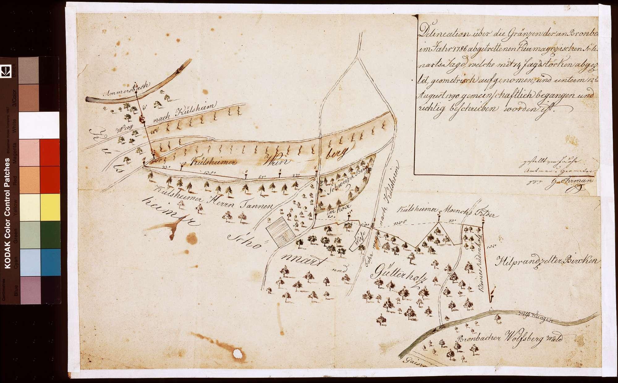 Delineation über die Grenzen der an Bronnbach im Jahr 1786 abgetretenen kurmainzischen Schönertsjagd (Inselkarte), Bild 1