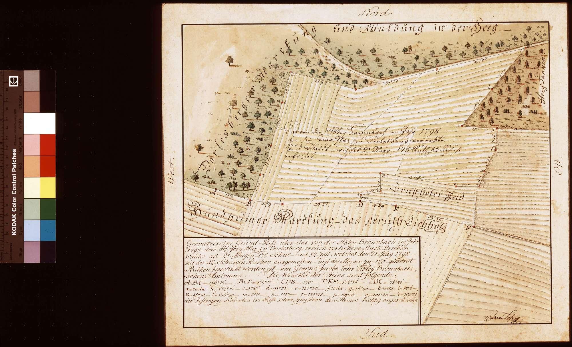 [Vermessung des dem Hans-Jörg Platz zu Dörlesberg erblich verliehenen Stücks Birkenwald am Hegwald], Bild 1