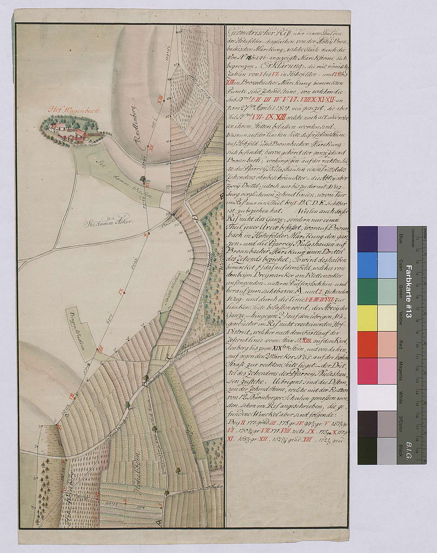 Geometrischer Riss über einen Teil von der Höhefelder, desgleichen von der Abtei Bronnbachischen Markung, welche Teile durch die von Nr. 18 bis 46 angezeigte Marksteine sich begrenzen, Bild 1