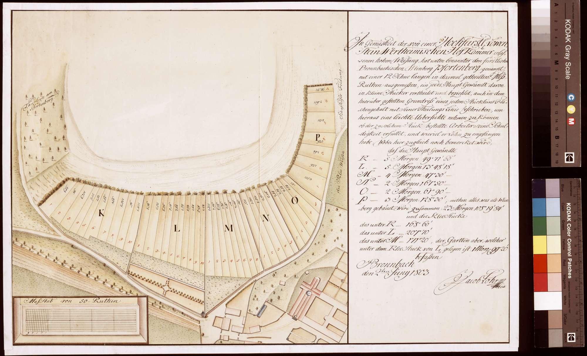 [Vermessung und Aufteilung des Pfortenweinbergs als Bemessungsgrundlage für die Besoldung der Weinbergsleute] (Inselkarte), Bild 1