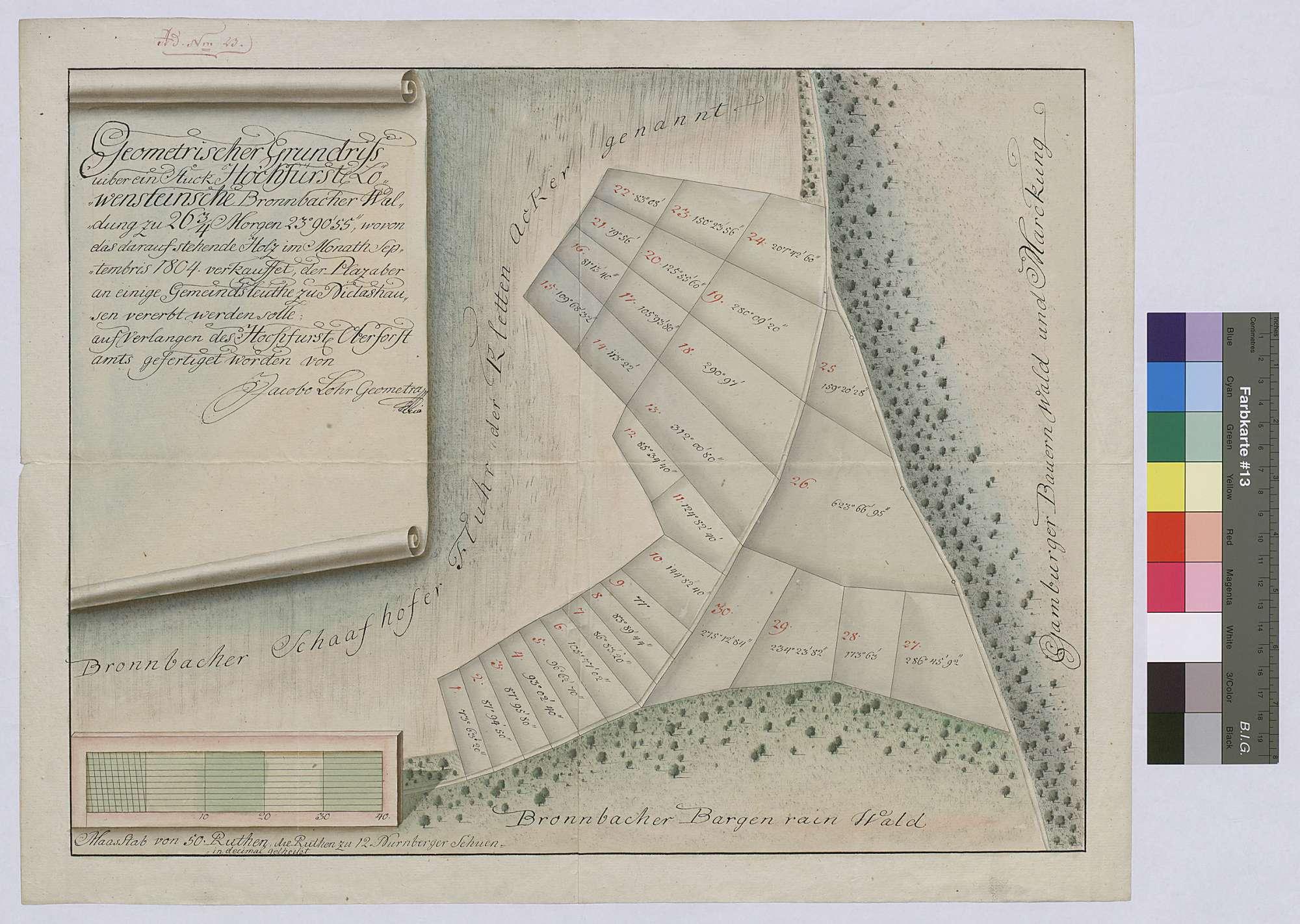 Geometrischer Grundriss über ein Stück Bronnbacher Waldung [am Bargenrain], wovon das darauf stehende Holz im Monat September 1804 verkauft, der Platz aber an einige Gemeindsleute zu Niklashausen vererbt werden soll, Bild 1