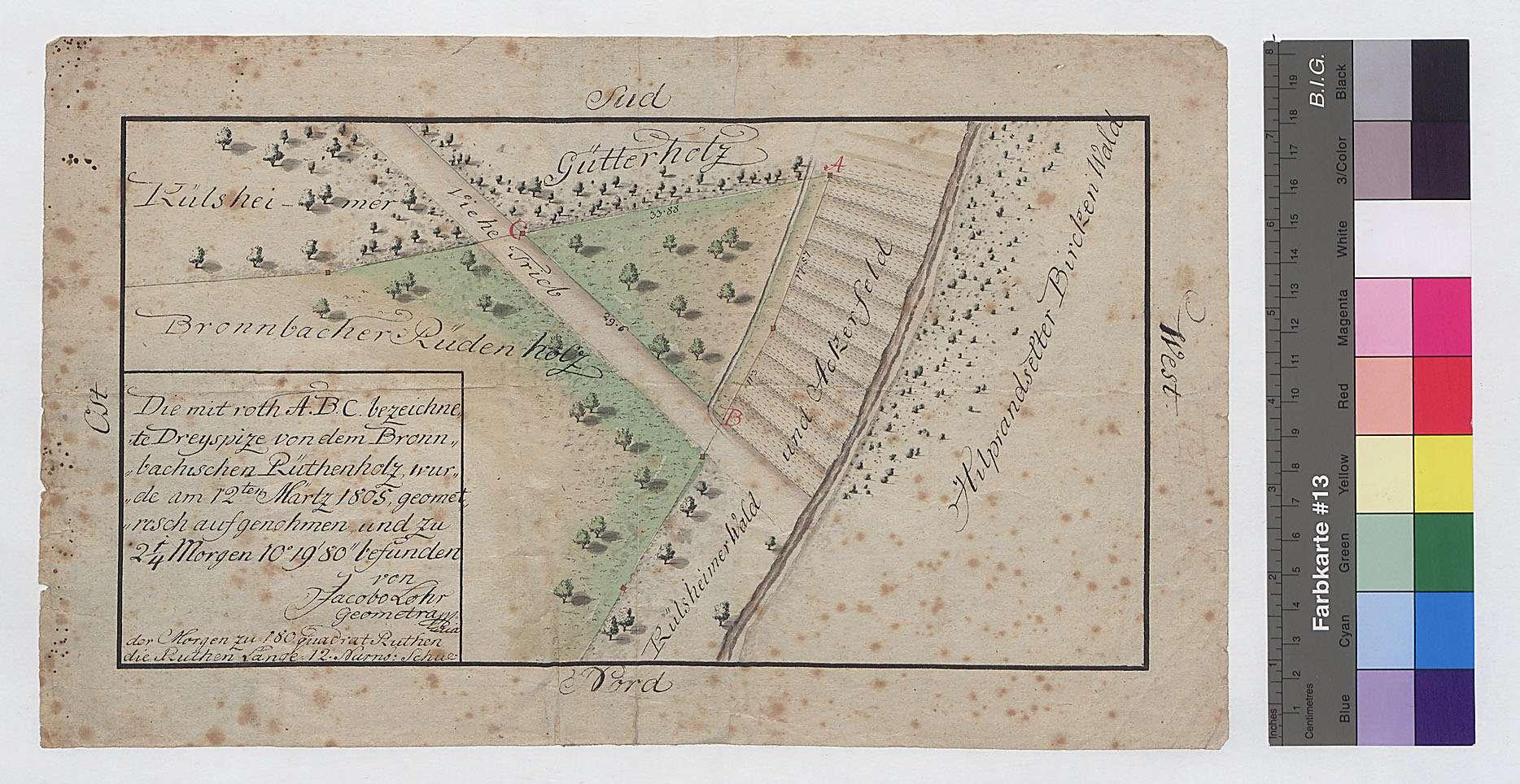 """[Vermessung einer """"Dreispitze von dem bronnbachischen Rüthenholz"""" im südlichen Schönert] (Inselkarte), Bild 1"""