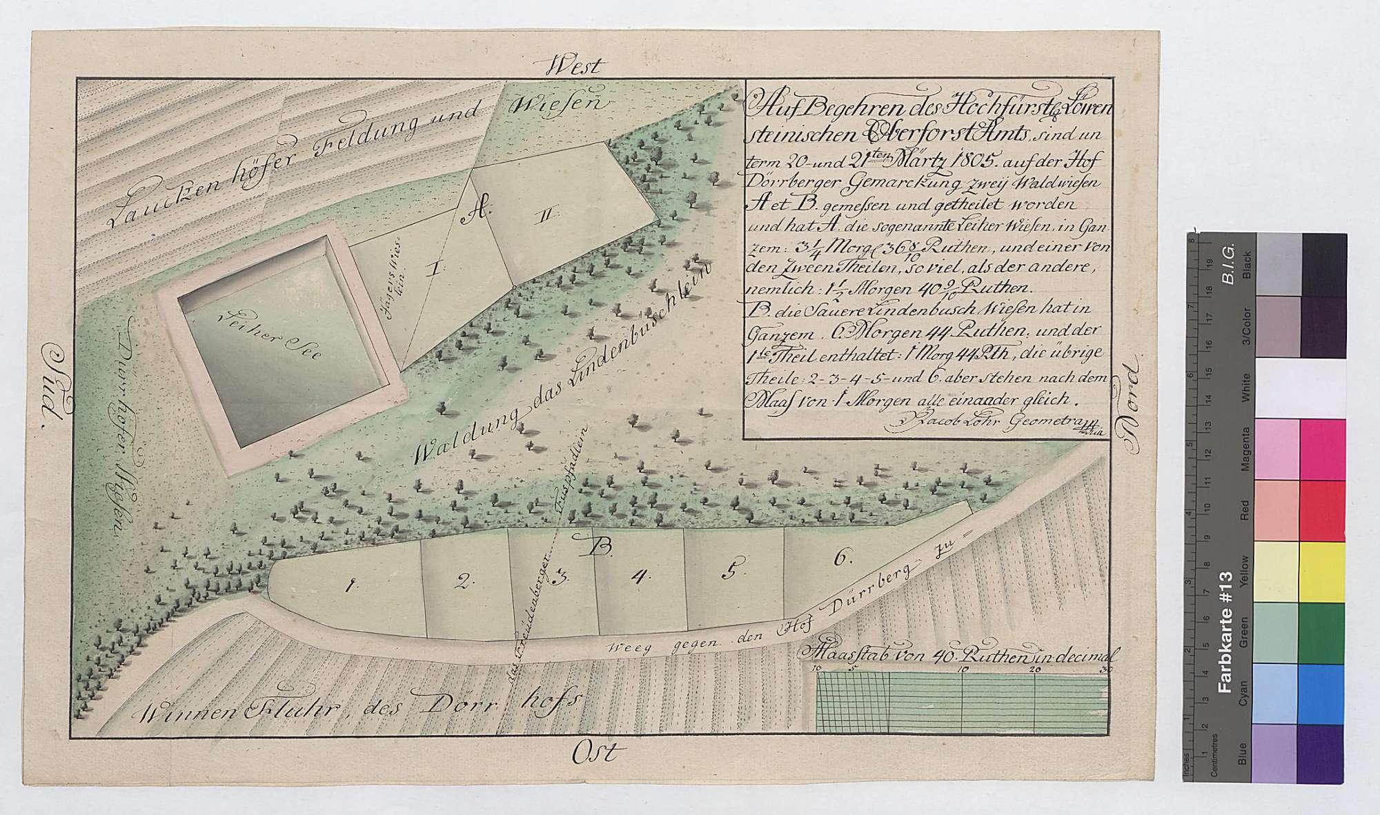 [Vermessung und Aufteilung zweier Waldwiesen, der Leiherwiese und der Saueren Lindenbuschwiese, auf Dürrhöfer Gemarkung], Bild 1