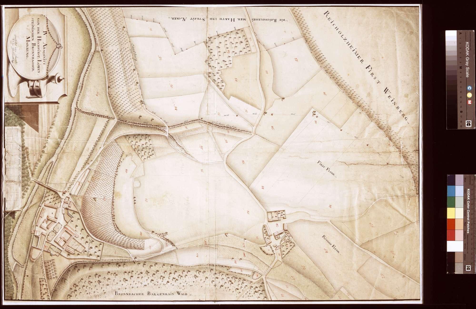 IV. Abschnitt von der Bronnbacher Markung, Bild 1