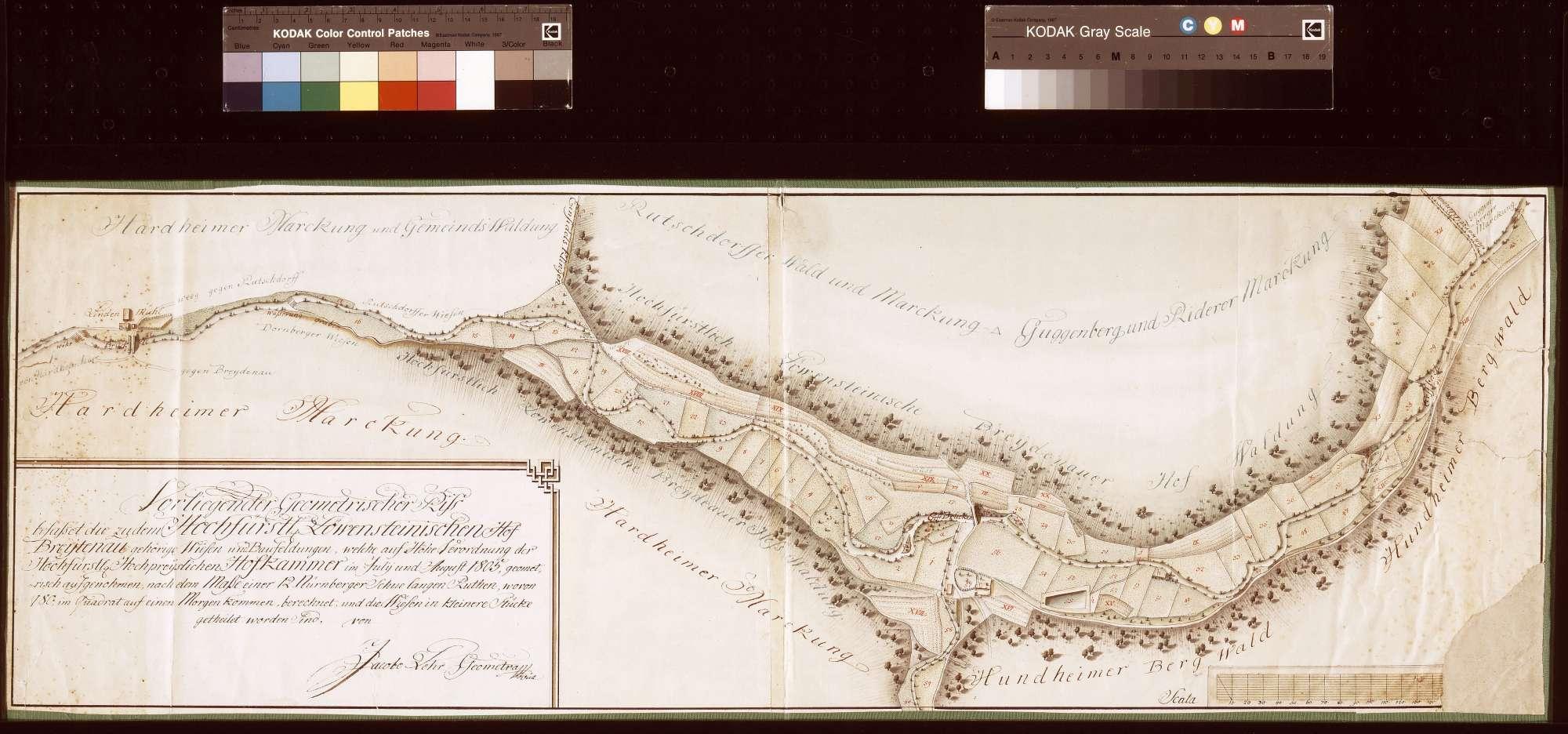 [Neuaufnahme der zum Hof Breitenau gehörigen Wiesen und Baufeldungen im Juli und August 1805] (Inselkarte), Bild 1