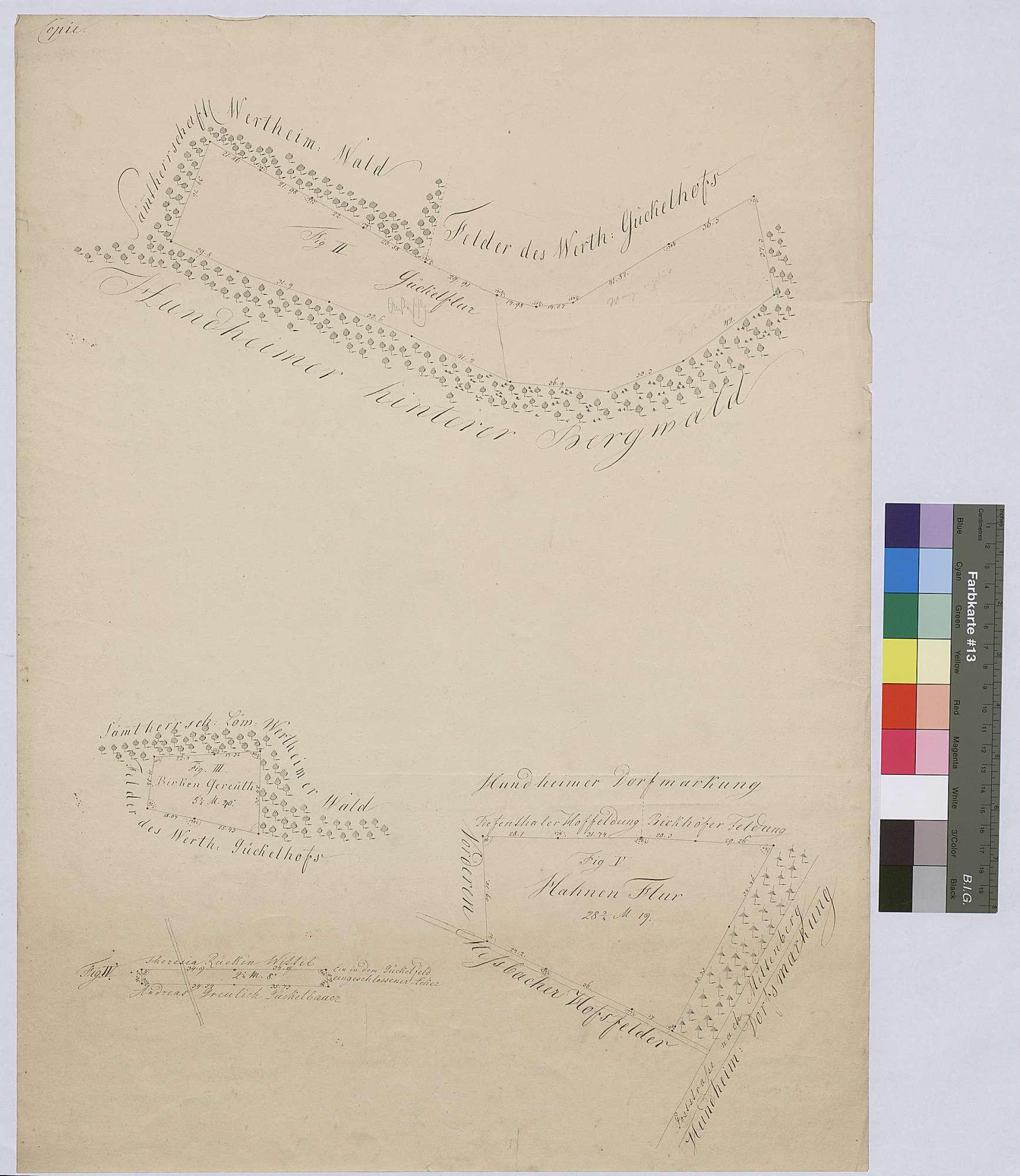 [Neuabsteinung einiger zum Hinteren Meßhof gehörender Wald- und Flurstücke im und beim Steinbacher Forst] (Inselkarte), Bild 1