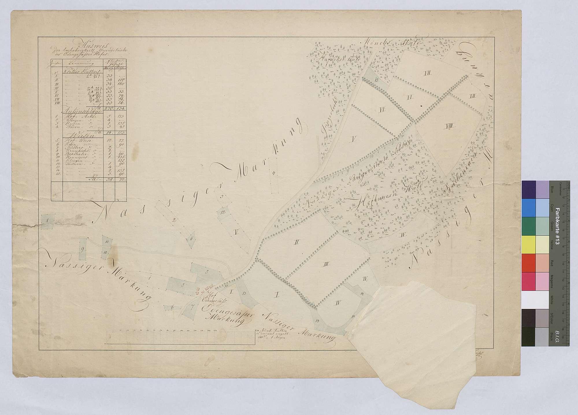 Grundstücke des Ödengesäßer Hofes (Inselkarte), b