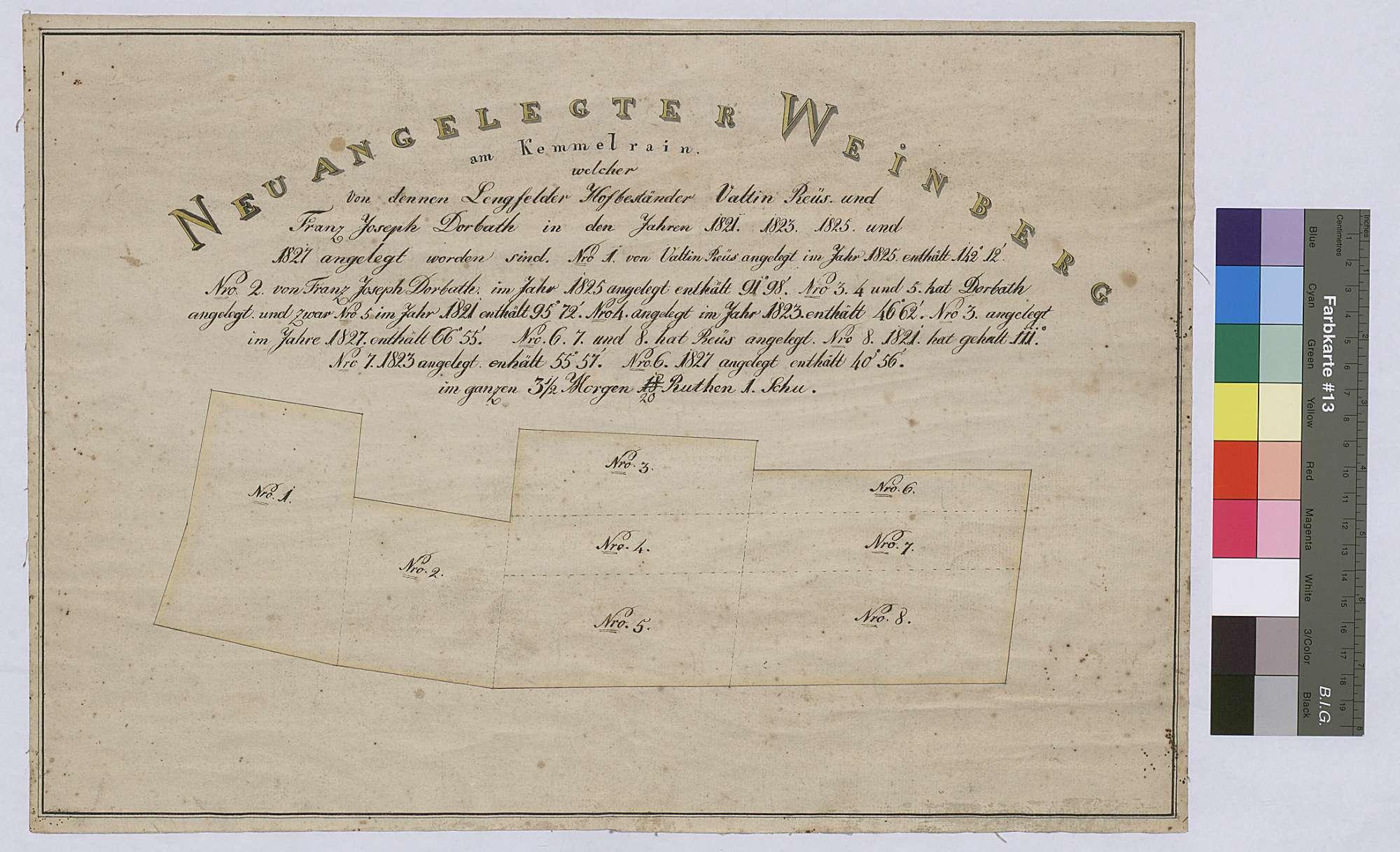 Neuangelegter Weinberg am Kemelrain von den Lengfelder Hofbeständern Valtin Reus und Franz Joseph Dorbath in den Jahren 1821, 1823, 1825 und 1827 (Inselkarte), Bild 1